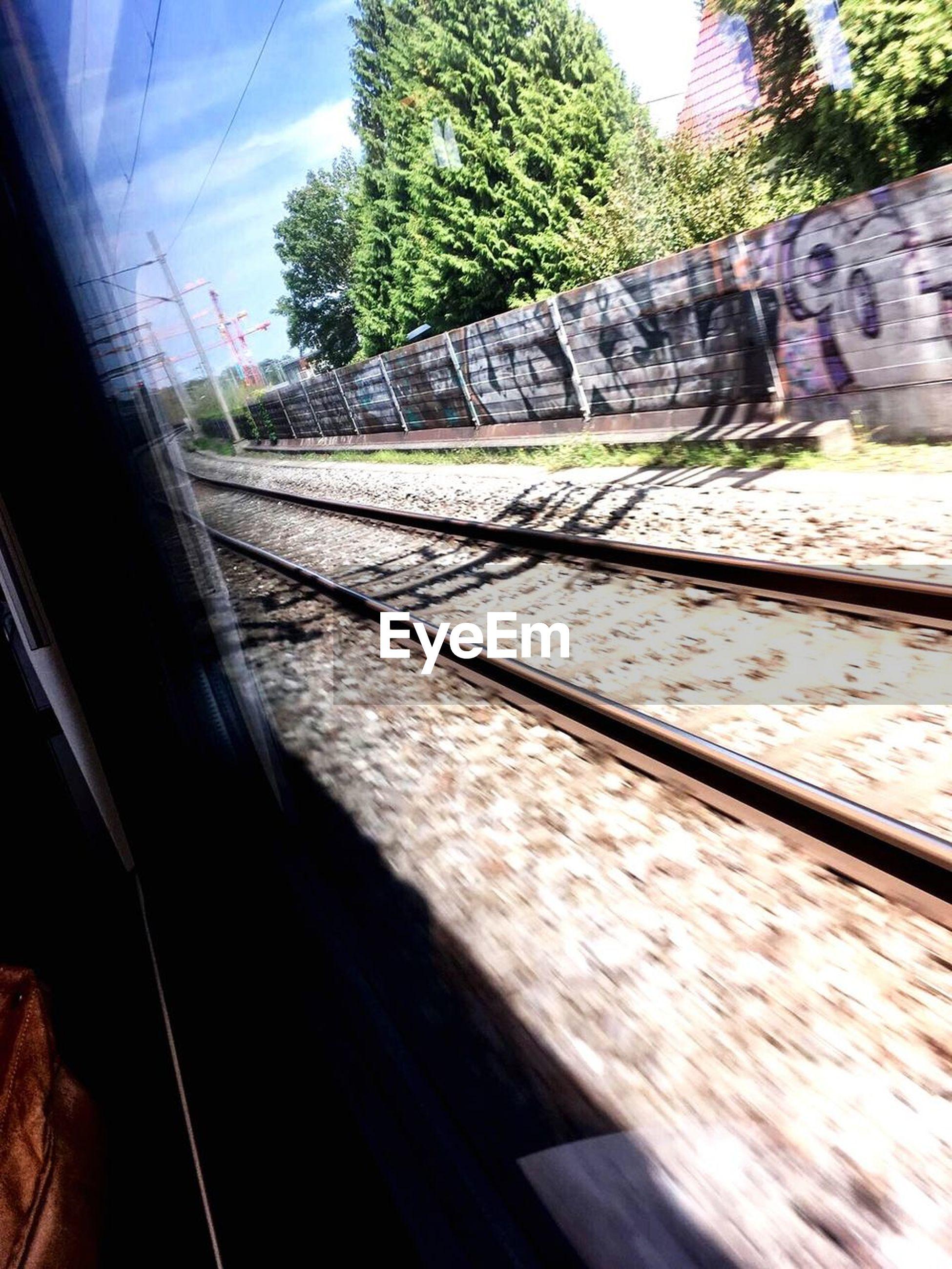 railroad track, rail transportation, transportation, tree, sunlight, day, no people, public transportation, railway track, train - vehicle, railroad, built structure, architecture, outdoors, sky, close-up