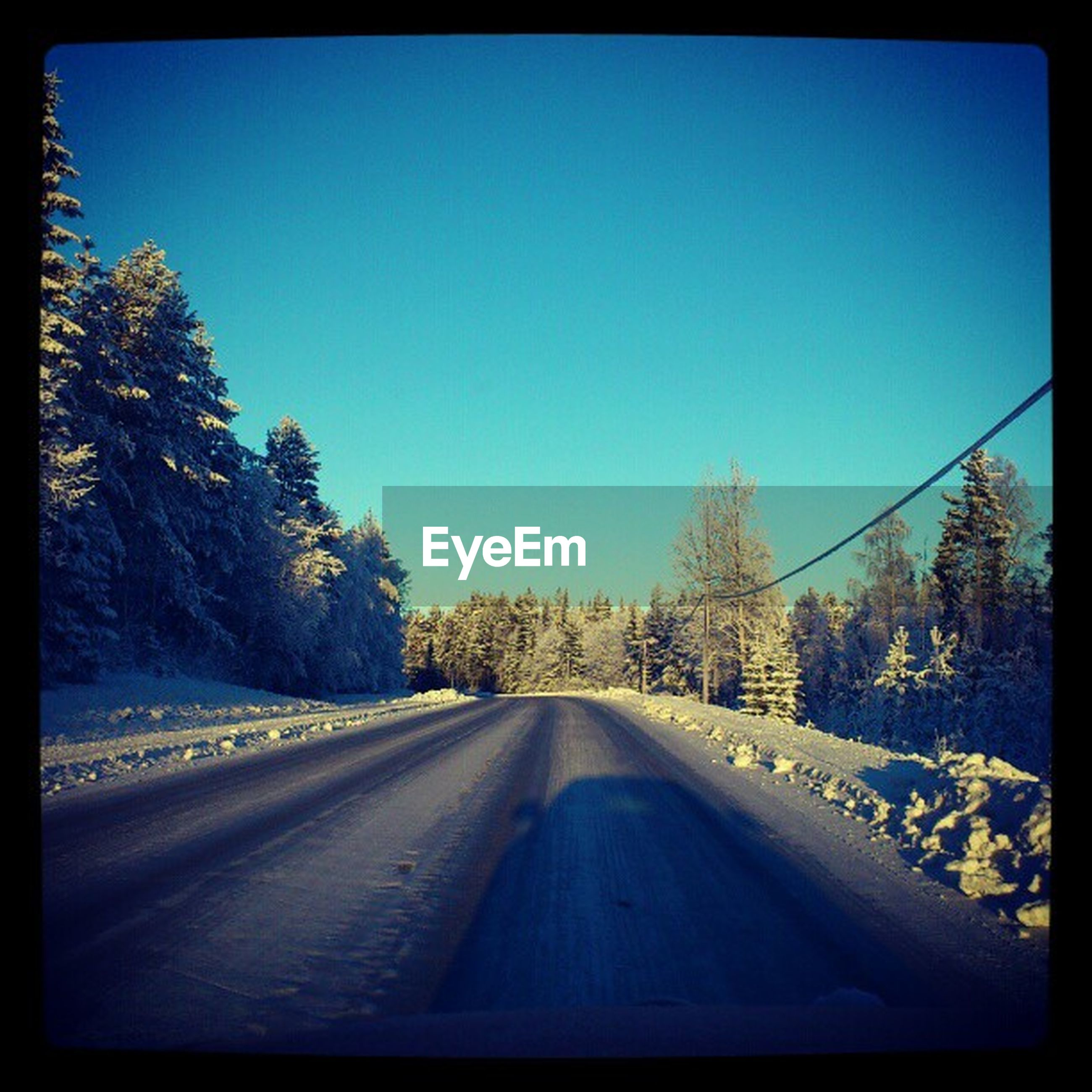 clear sky, transfer print, snow, the way forward, blue, road, transportation, winter, cold temperature, copy space, auto post production filter, tree, diminishing perspective, vanishing point, season, nature, empty, landscape, country road, tranquil scene