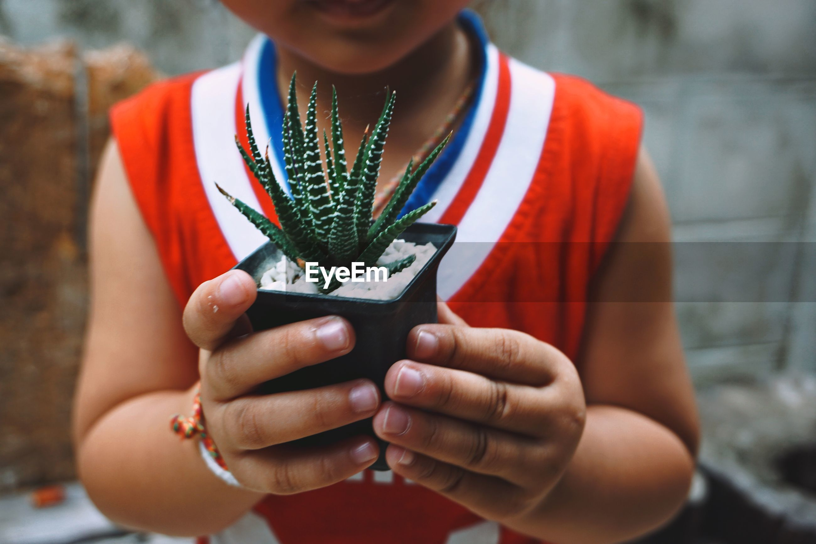 Midsection of girl holding potted plant outdoors