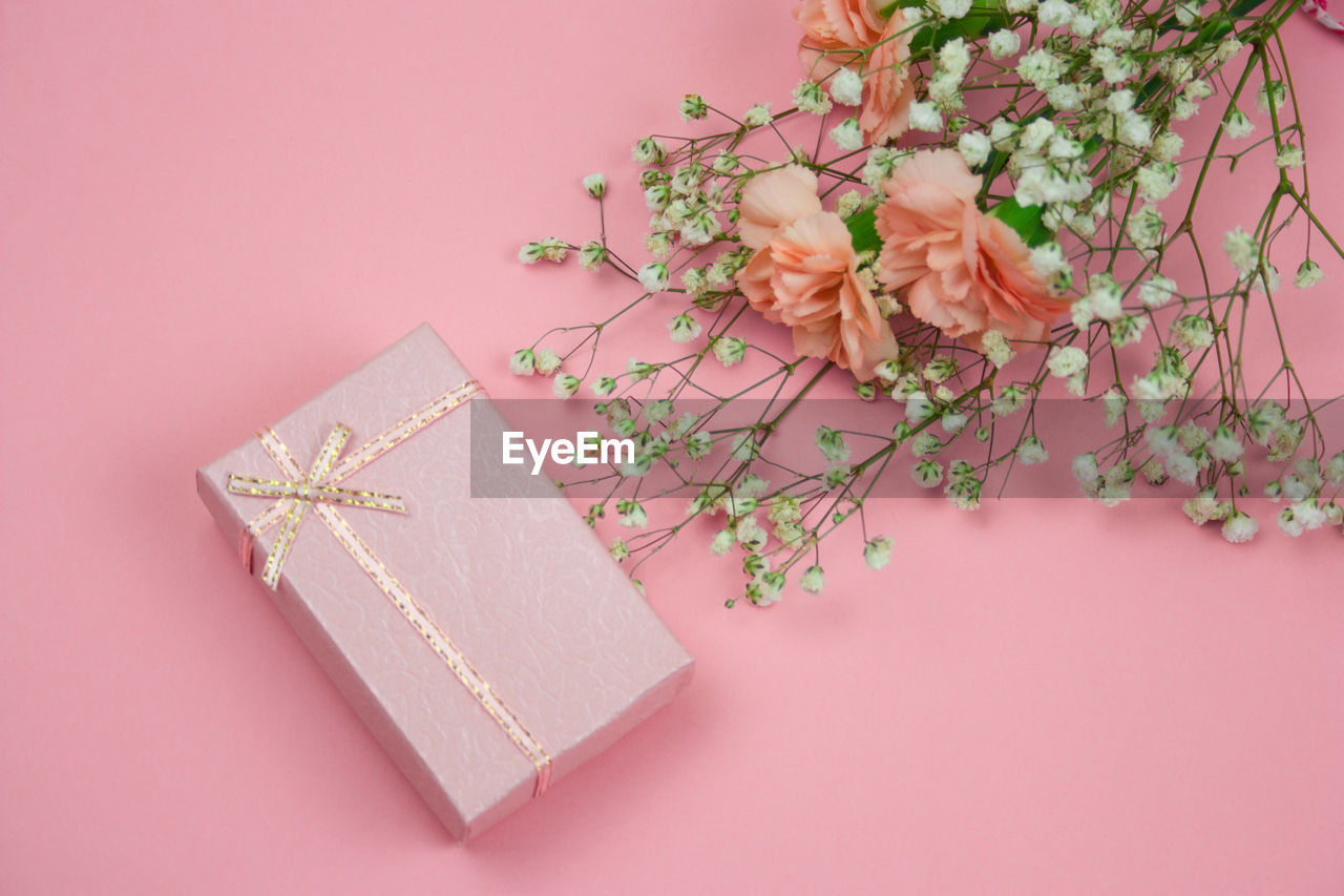 flower, flowering plant, pink color, indoors, plant, studio shot, no people, still life, gift, close-up, celebration, ribbon, high angle view, decoration, ribbon - sewing item, nature, colored background, beauty in nature, holiday, freshness, gift box
