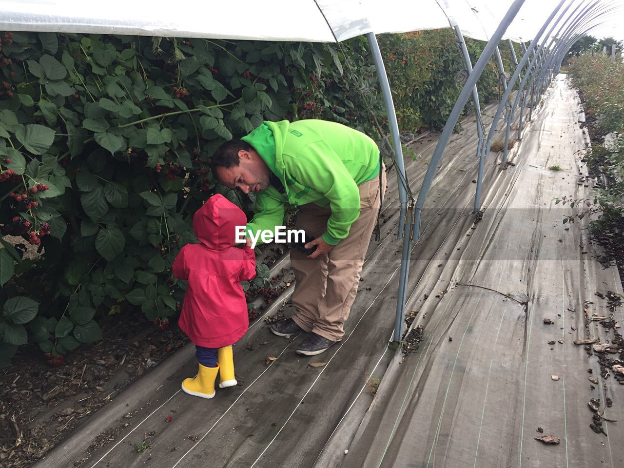 Full Length Of Father Standing With Child In Greenhouse