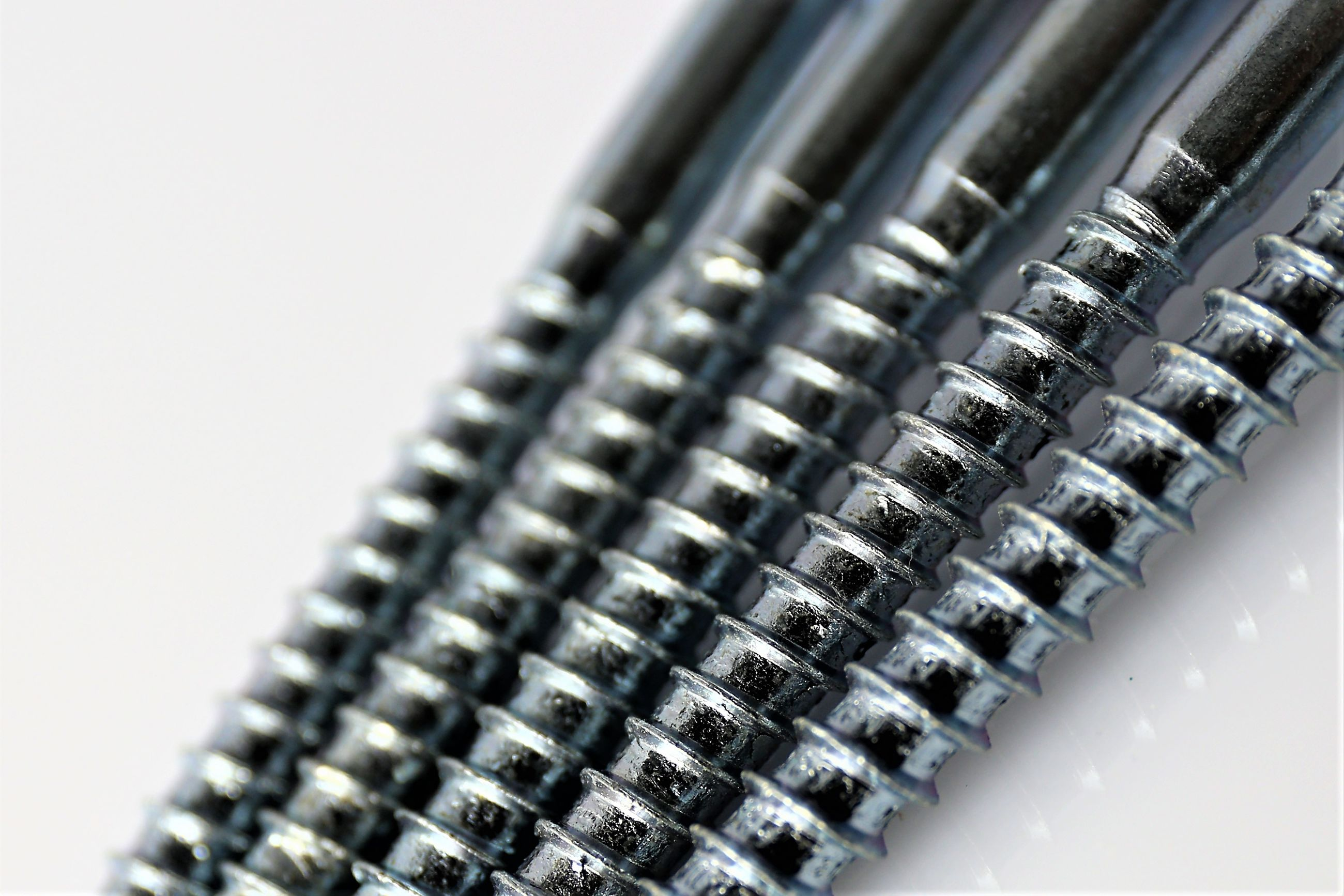 Close-up of screws over white background