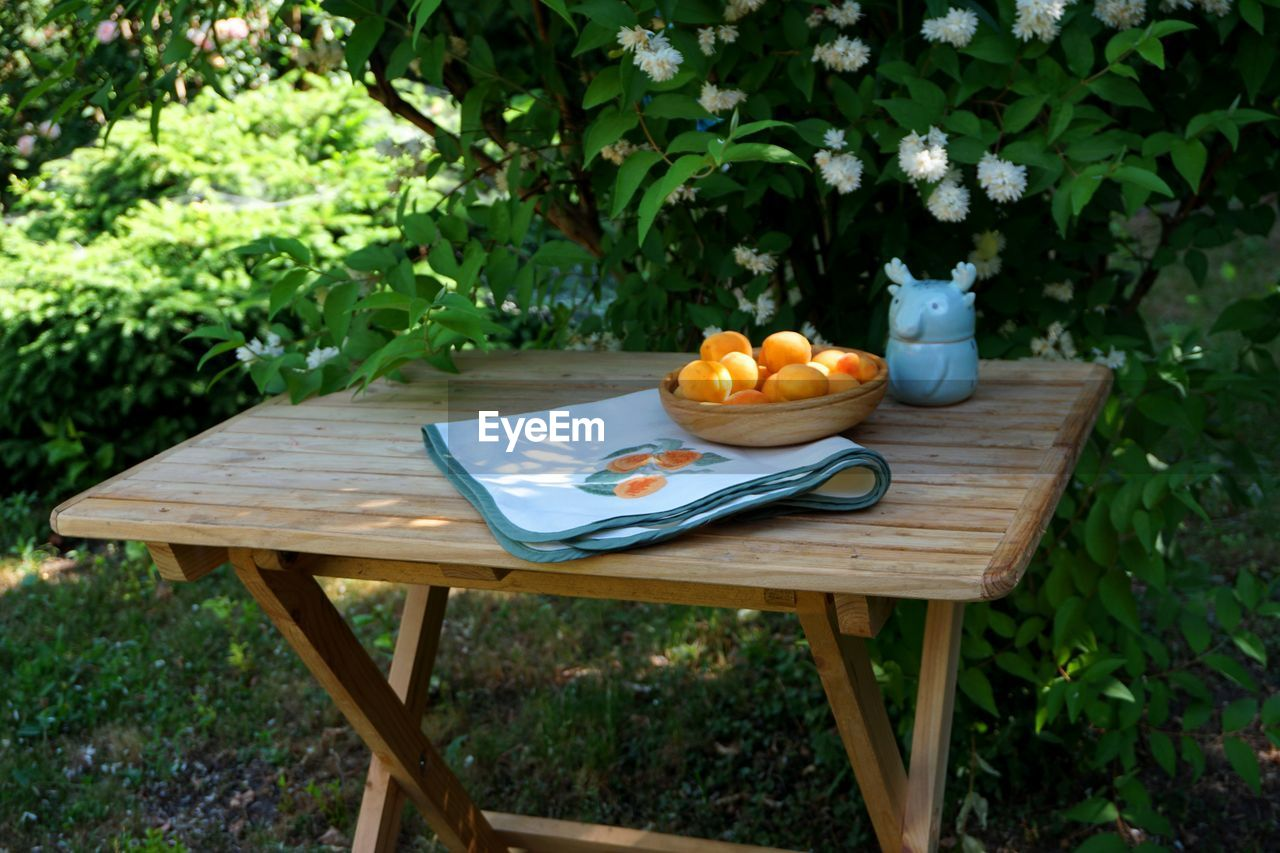 food and drink, food, fruit, healthy eating, freshness, wellbeing, table, wood - material, plant, day, no people, seat, nature, front or back yard, chair, apple - fruit, citrus fruit, orange color, orange, outdoors