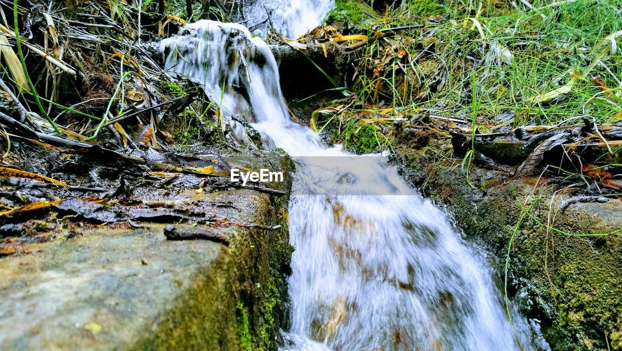 water, flowing water, motion, plant, forest, long exposure, nature, beauty in nature, tree, land, no people, flowing, rock, day, blurred motion, downloading, waterfall, moss, environment, outdoors, stream - flowing water, power in nature, falling water