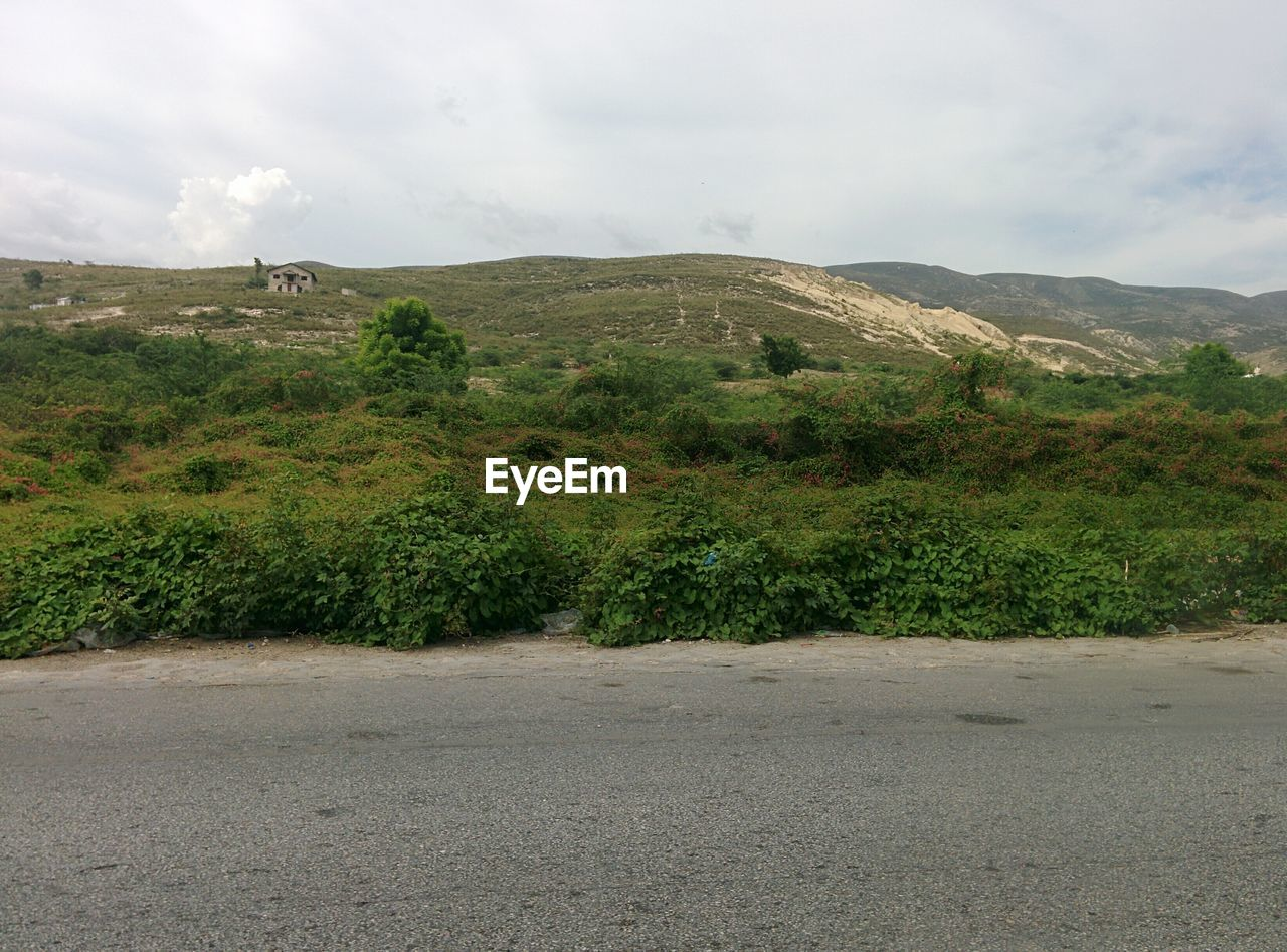 nature, landscape, mountain, tranquility, sky, no people, beauty in nature, road, scenics, growth, tree, outdoors, day, grass