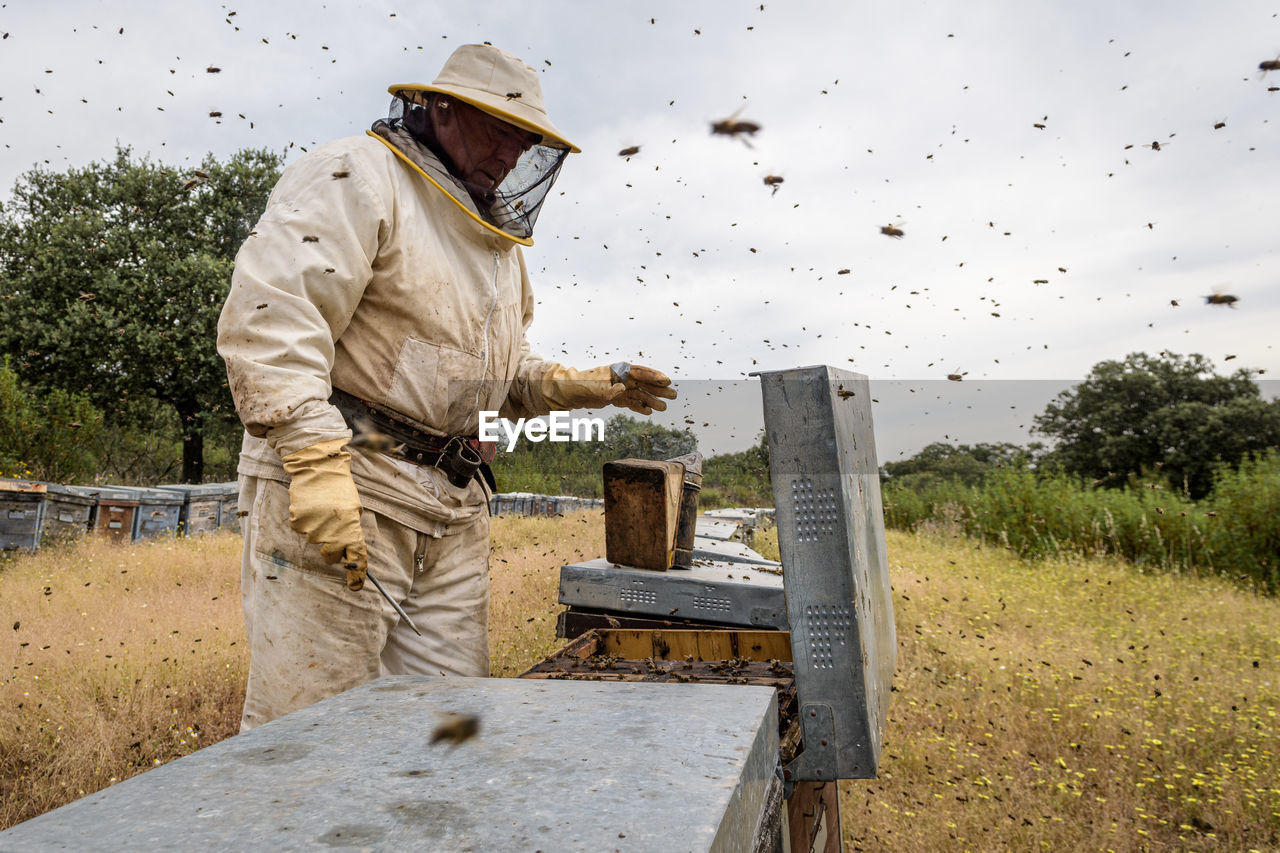 MAN WORKING ON AGRICULTURAL FIELD