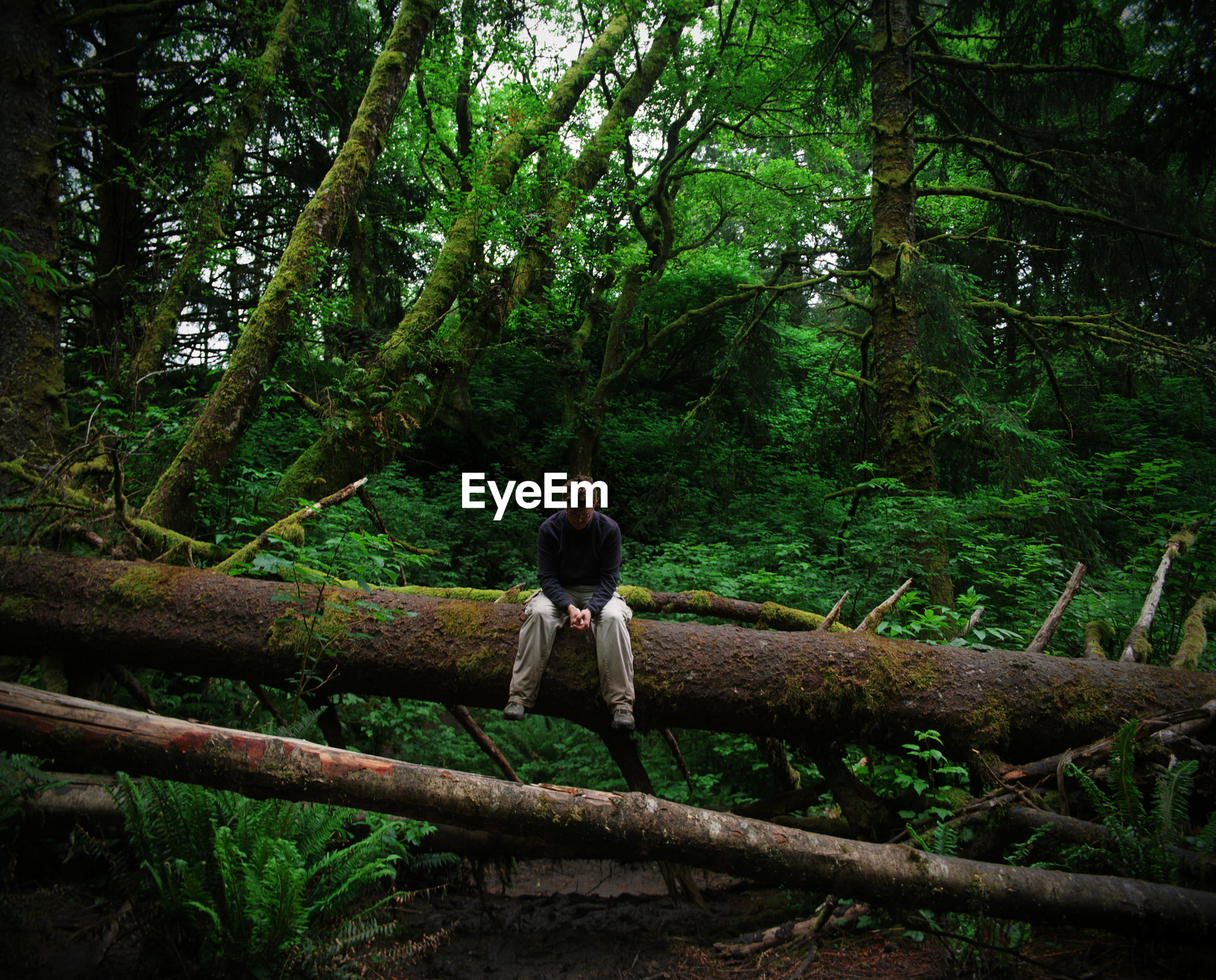 Full length of man sitting on fallen tree in forest