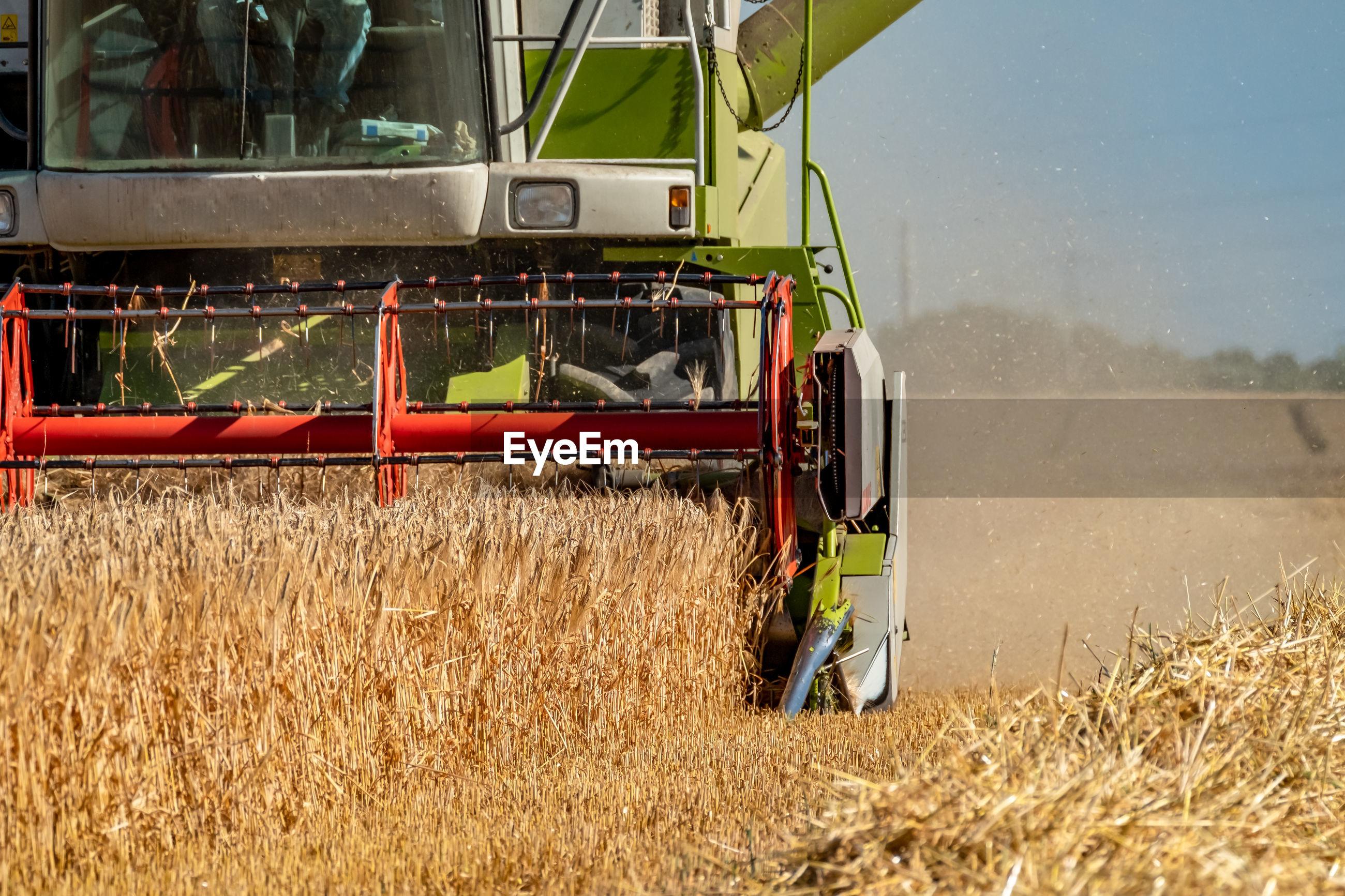 Combine harvester in farm