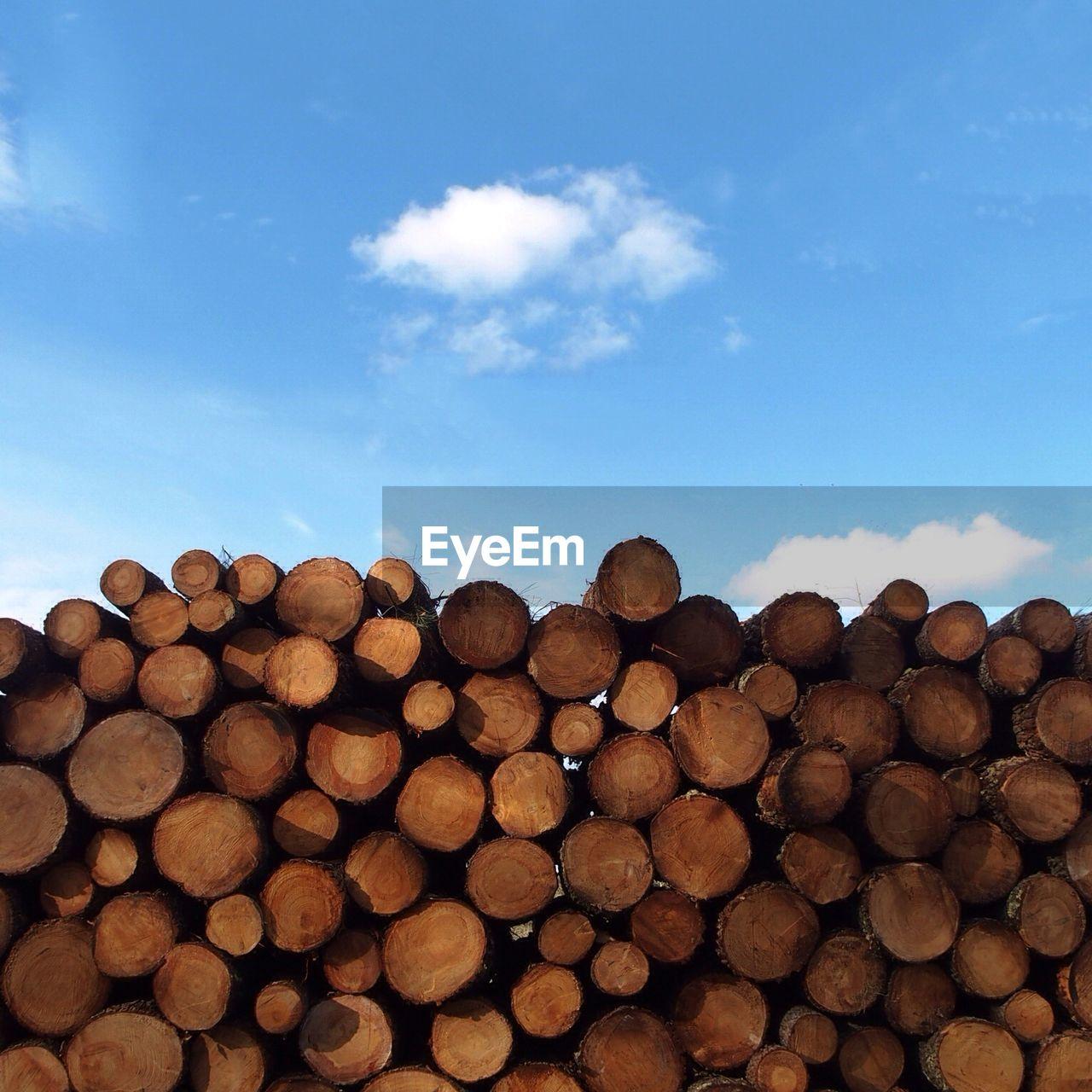 Stacks Of Logs Against Sky
