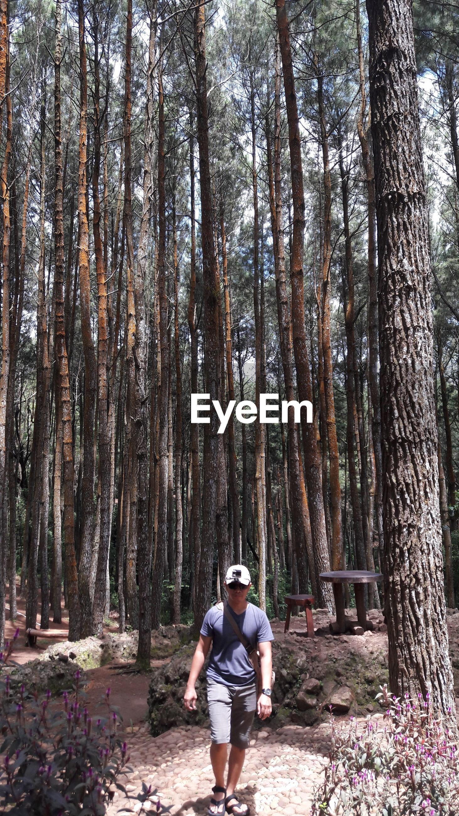 Full length of man standing against trees in forest