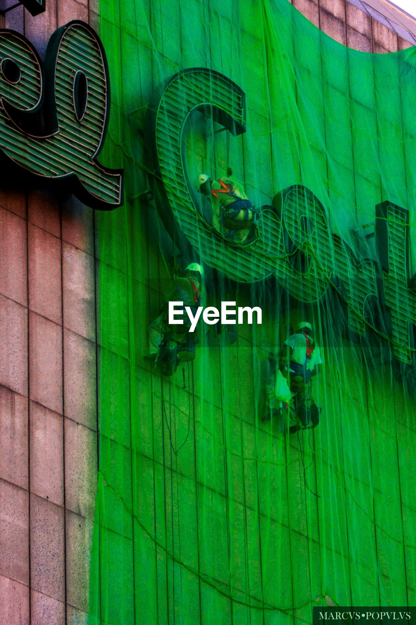 architecture, built structure, green color, no people, building exterior, window, outdoors, day, illuminated, glass - material, reflection, city, building, representation, wall - building feature, lighting equipment, transparent, animal representation, art and craft