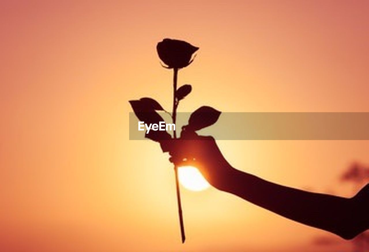 silhouette, human hand, human body part, sunset, one person, outdoors, people, adult, adults only, nature, sky, only men, one man only, close-up, day