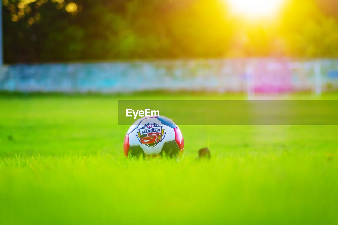 grass, plant, green color, nature, selective focus, field, land, ball, sunlight, day, soccer, outdoors, sport, no people, focus on foreground, close-up, growth, team sport, sunset, soccer ball