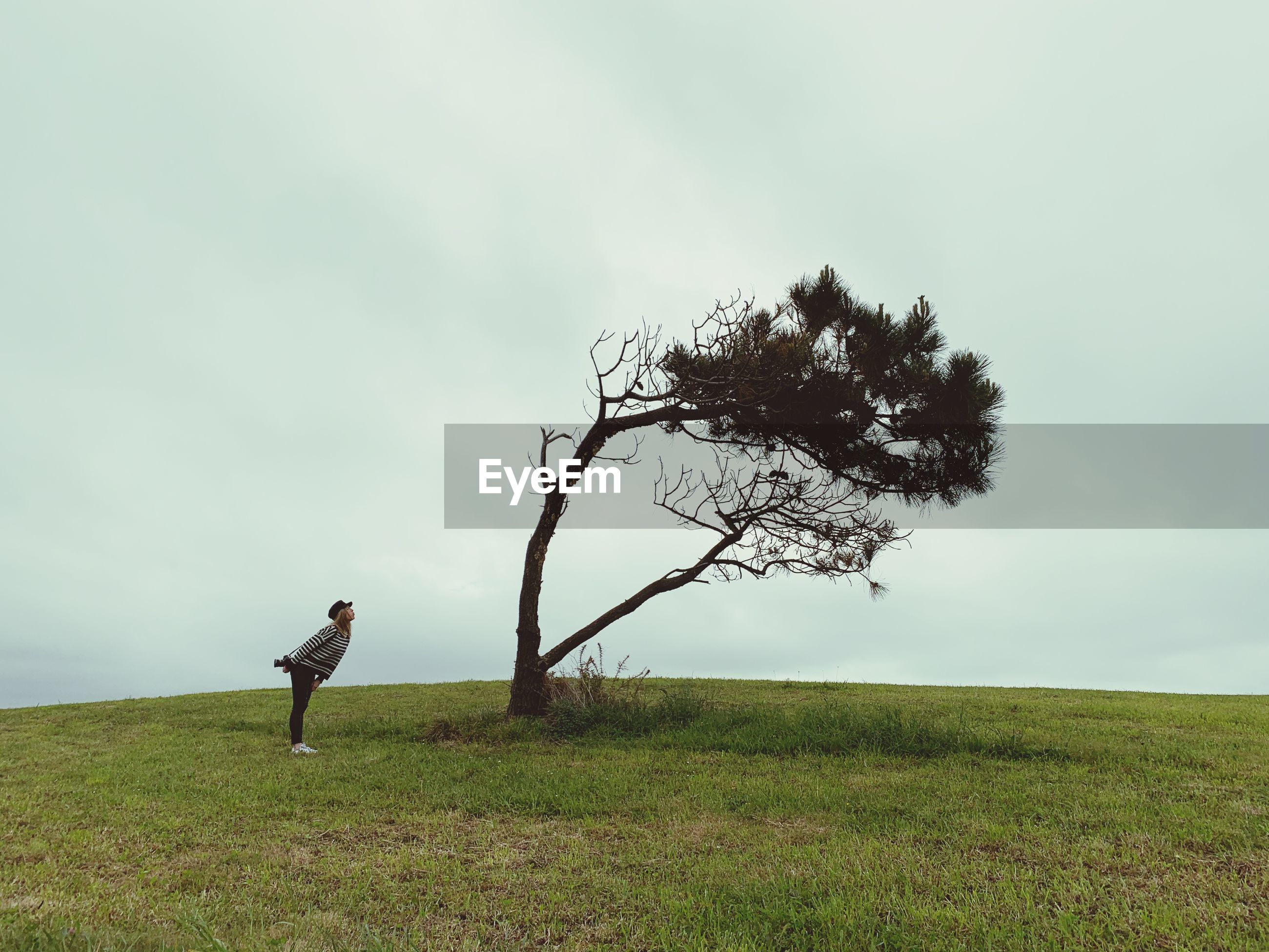 Woman standing by tree on land against sky