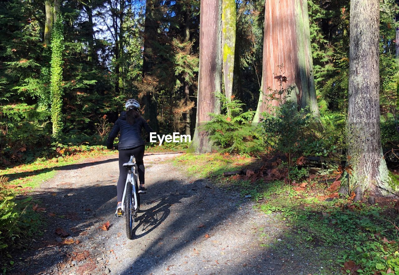 FULL LENGTH OF MAN RIDING BICYCLE ON TREE TRUNK