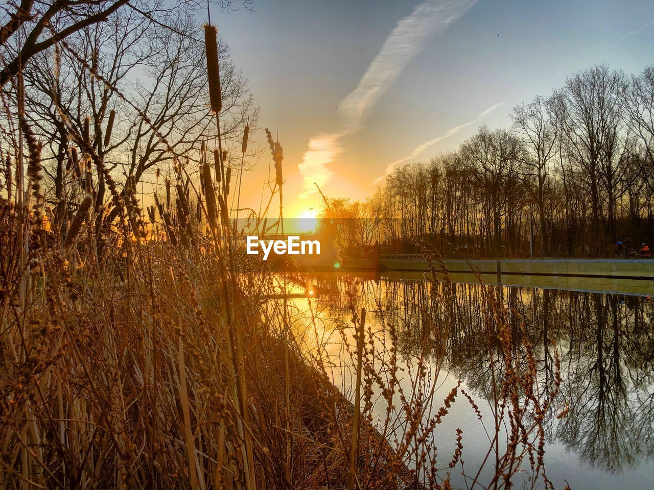 sky, sunset, scenics - nature, tranquility, beauty in nature, tree, reflection, plant, tranquil scene, lake, water, nature, sun, sunlight, no people, bare tree, sunbeam, idyllic, lens flare, outdoors