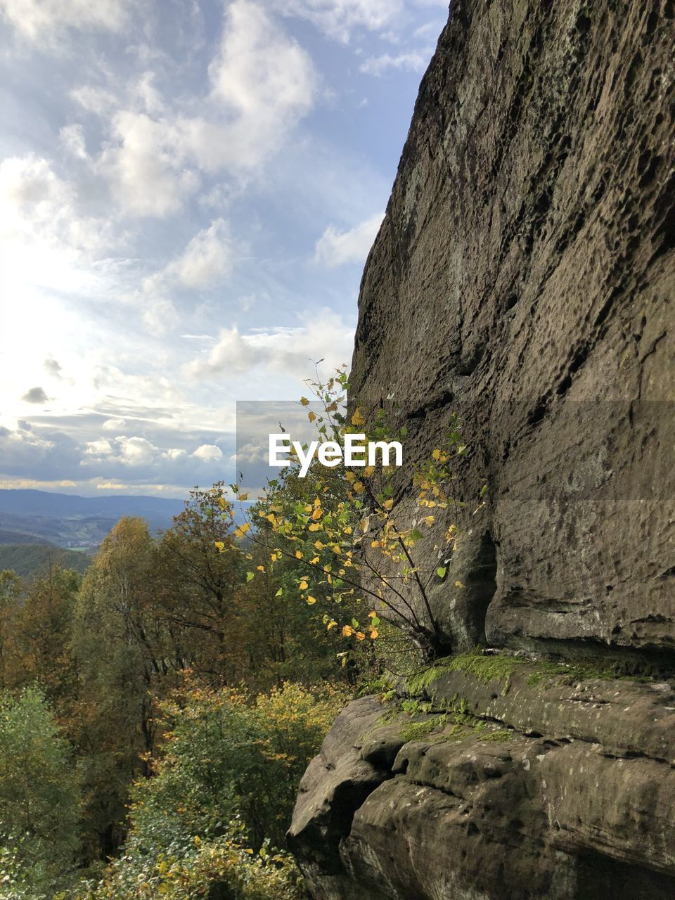 cloud - sky, sky, plant, beauty in nature, nature, rock, tranquility, scenics - nature, tree, day, no people, rock - object, tranquil scene, mountain, solid, growth, rock formation, non-urban scene, environment, landscape, outdoors, formation, eroded