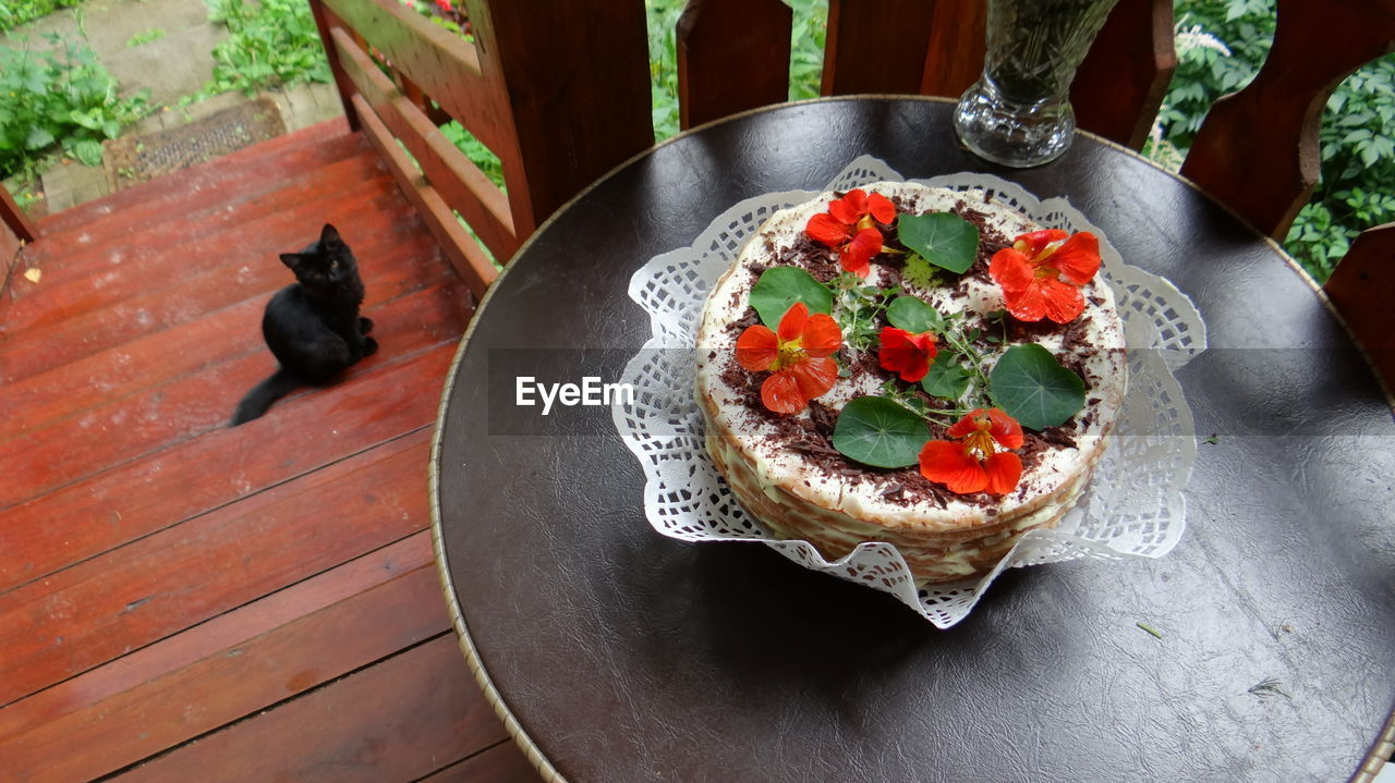animal, domestic, domestic animals, pets, food and drink, food, vertebrate, animal themes, mammal, freshness, cat, one animal, domestic cat, no people, table, feline, high angle view, ready-to-eat, plate, plant, small, crockery