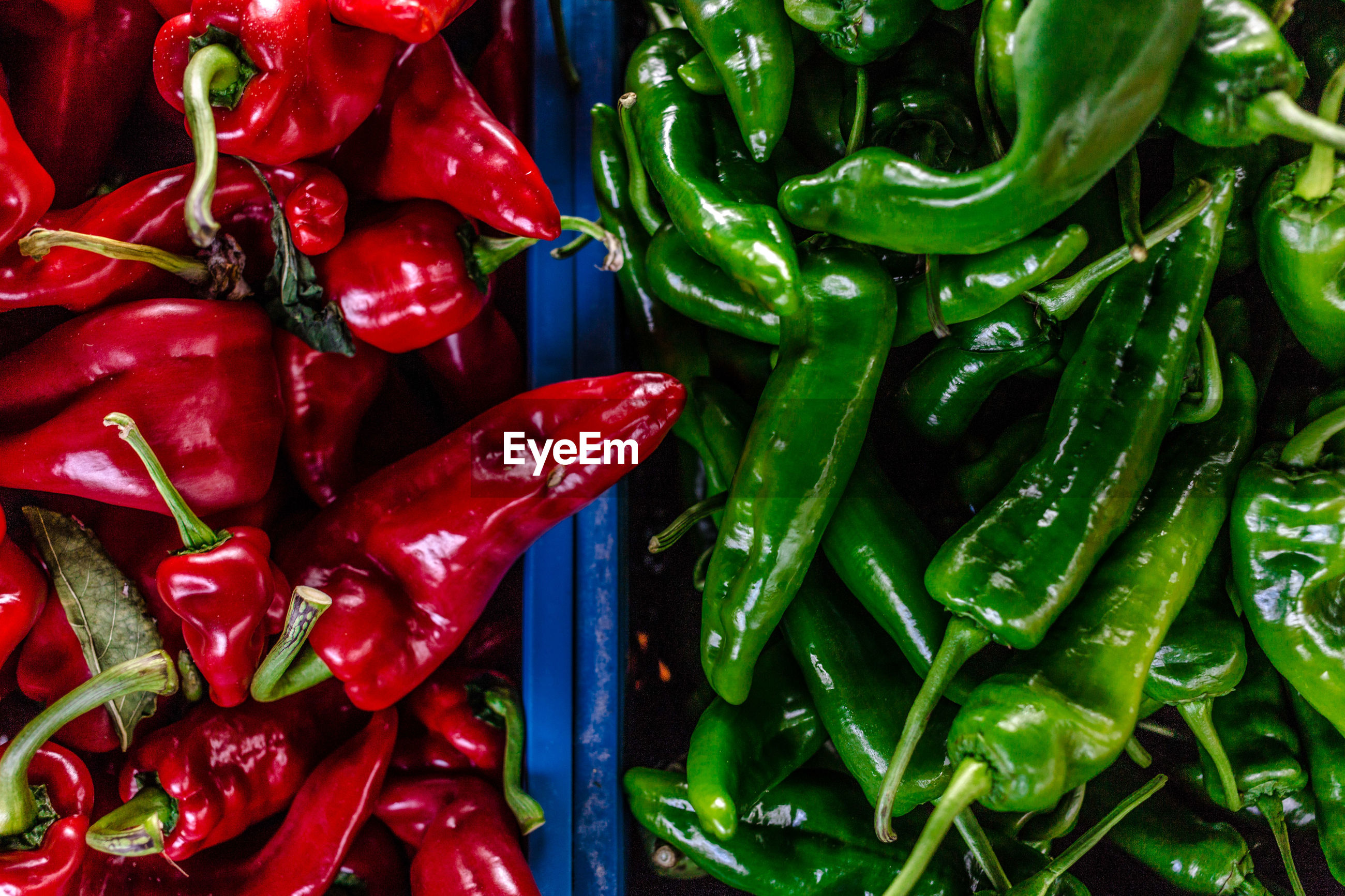 High angle view of chili peppers for sale +at market