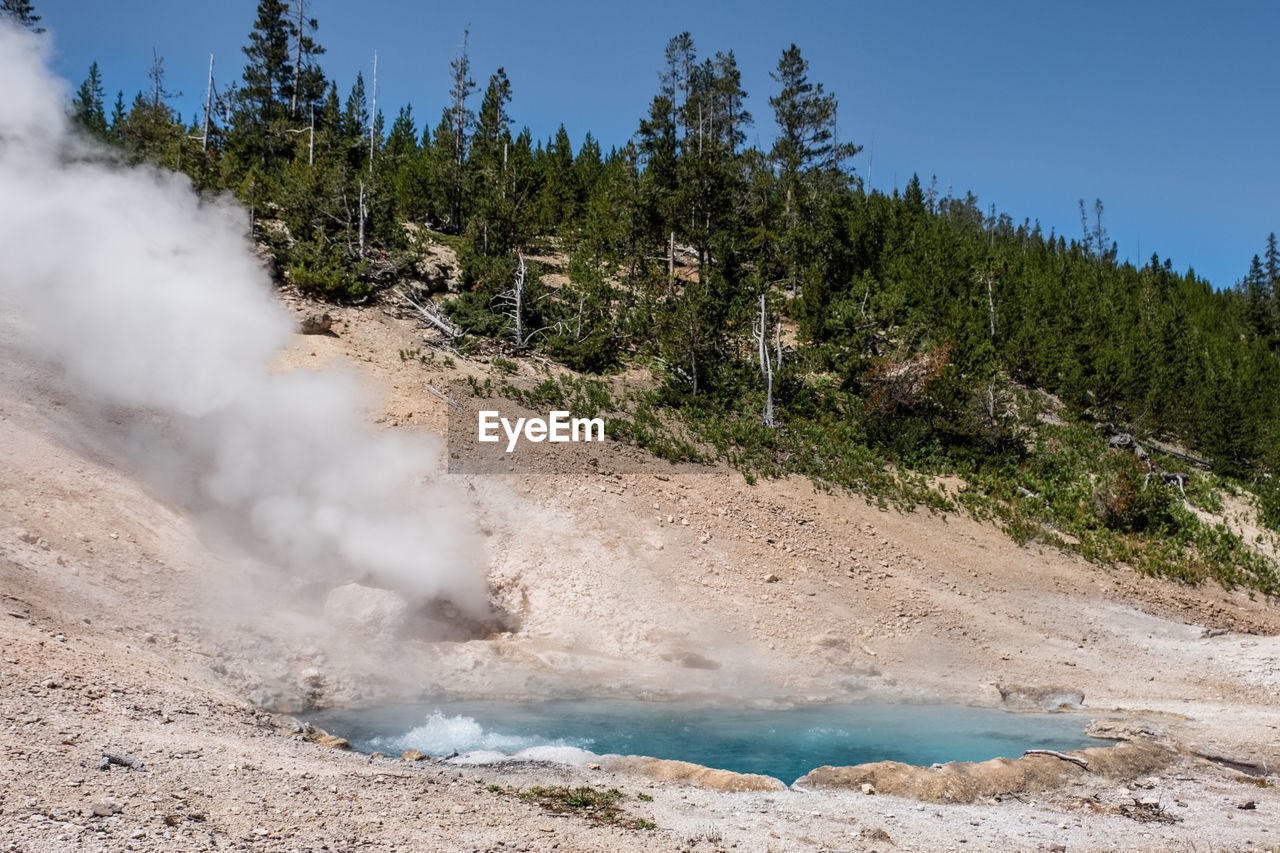 tree, heat - temperature, geology, smoke - physical structure, power in nature, land, plant, non-urban scene, day, beauty in nature, nature, hot spring, geyser, steam, no people, scenics - nature, physical geography, mountain, water, landscape, outdoors