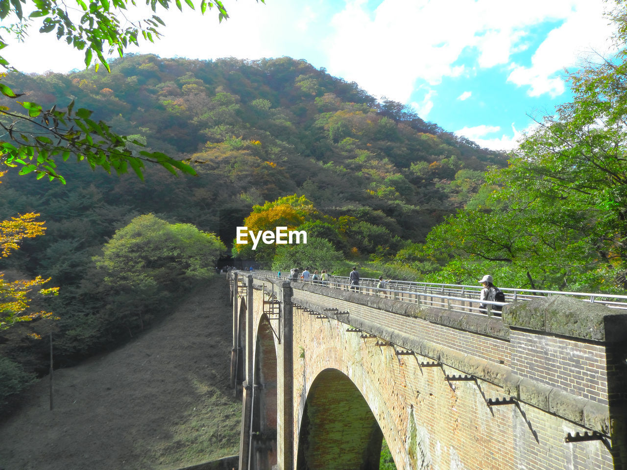 tree, plant, bridge, connection, bridge - man made structure, built structure, architecture, nature, mountain, day, sky, transportation, no people, growth, arch, forest, beauty in nature, outdoors, tranquility, cloud - sky, arch bridge