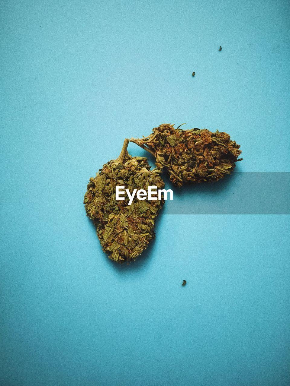 Close-Up Of Marijuana On Blue Table