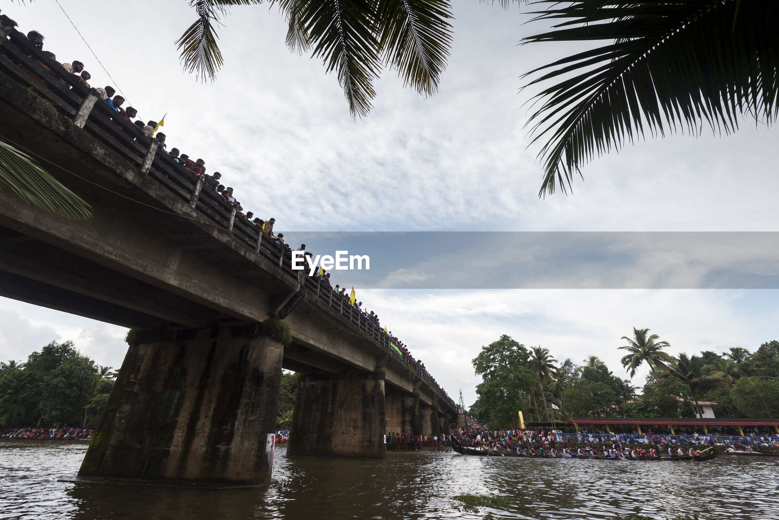 LOW ANGLE VIEW OF PALM TREES AND BRIDGE AGAINST SKY