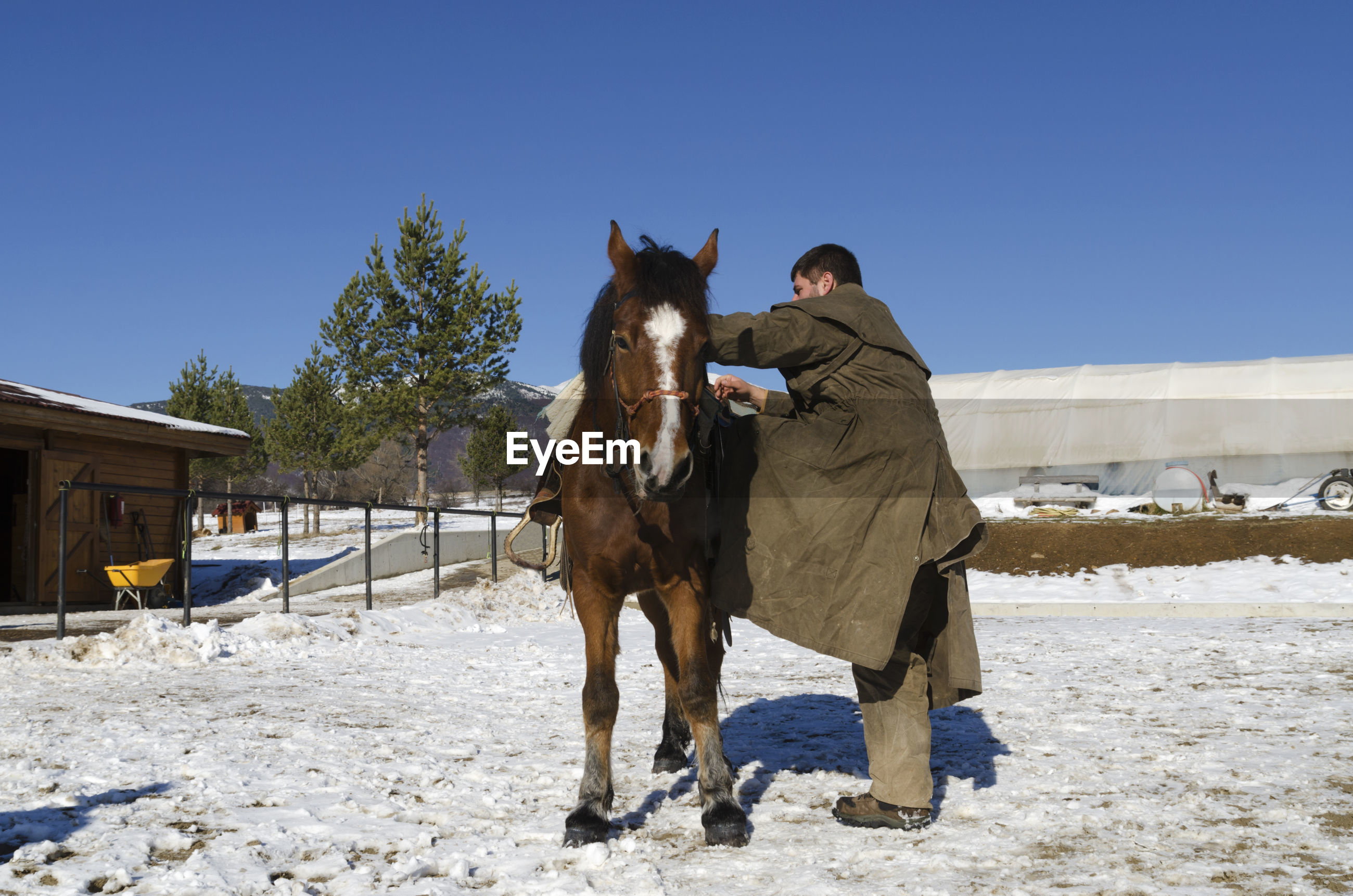 Man standing by horse in ranch against clear sky