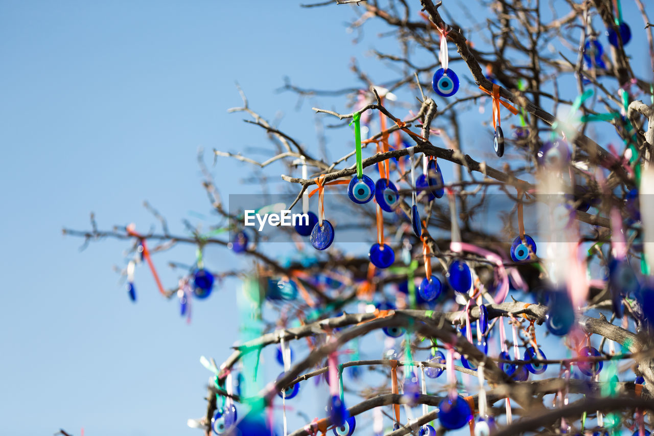 blue, no people, branch, plant, sky, nature, tree, focus on foreground, low angle view, selective focus, day, food, celebration, close-up, hanging, food and drink, outdoors, decoration, growth, healthy eating