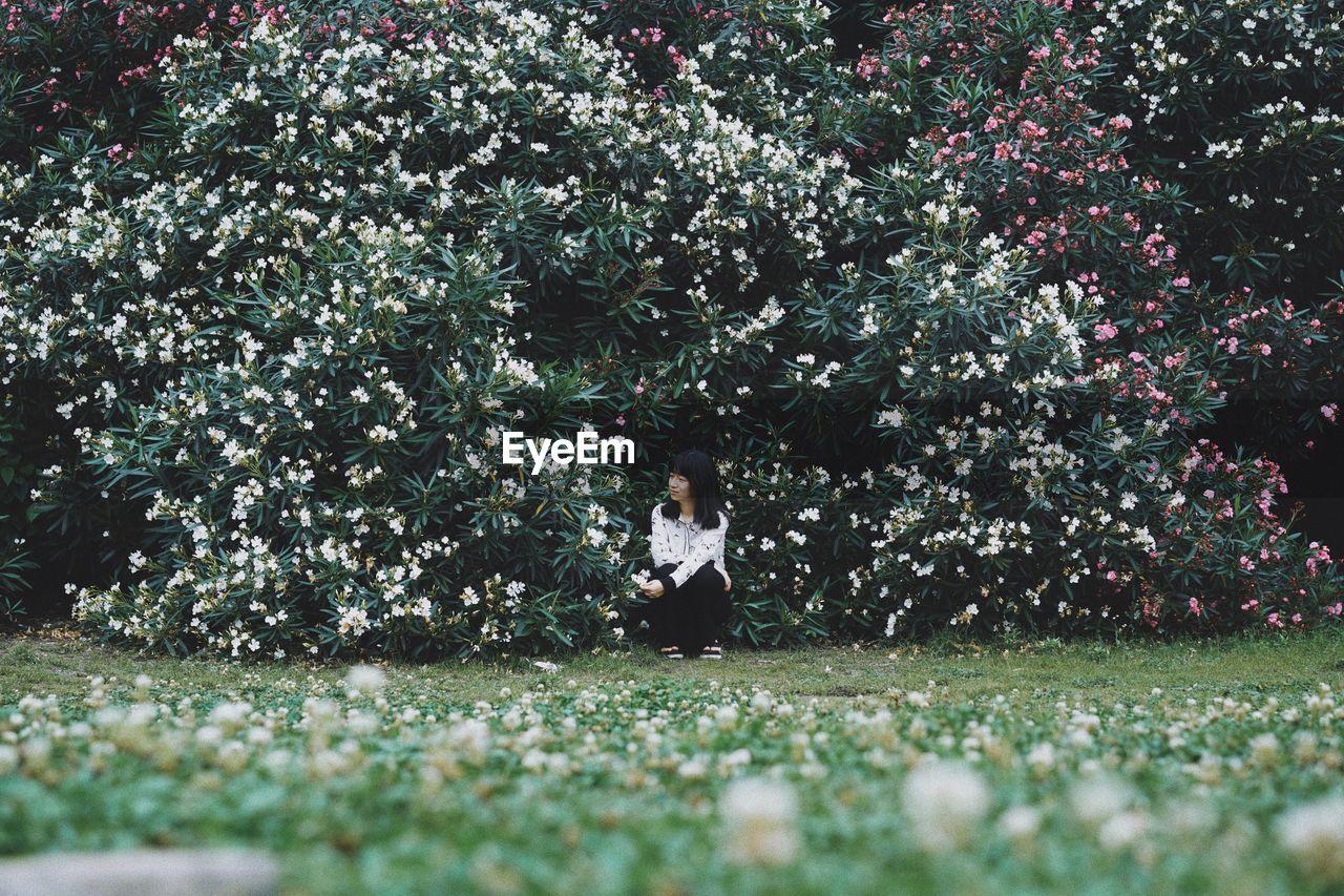 Woman Sitting On Field Against Flowering Plants
