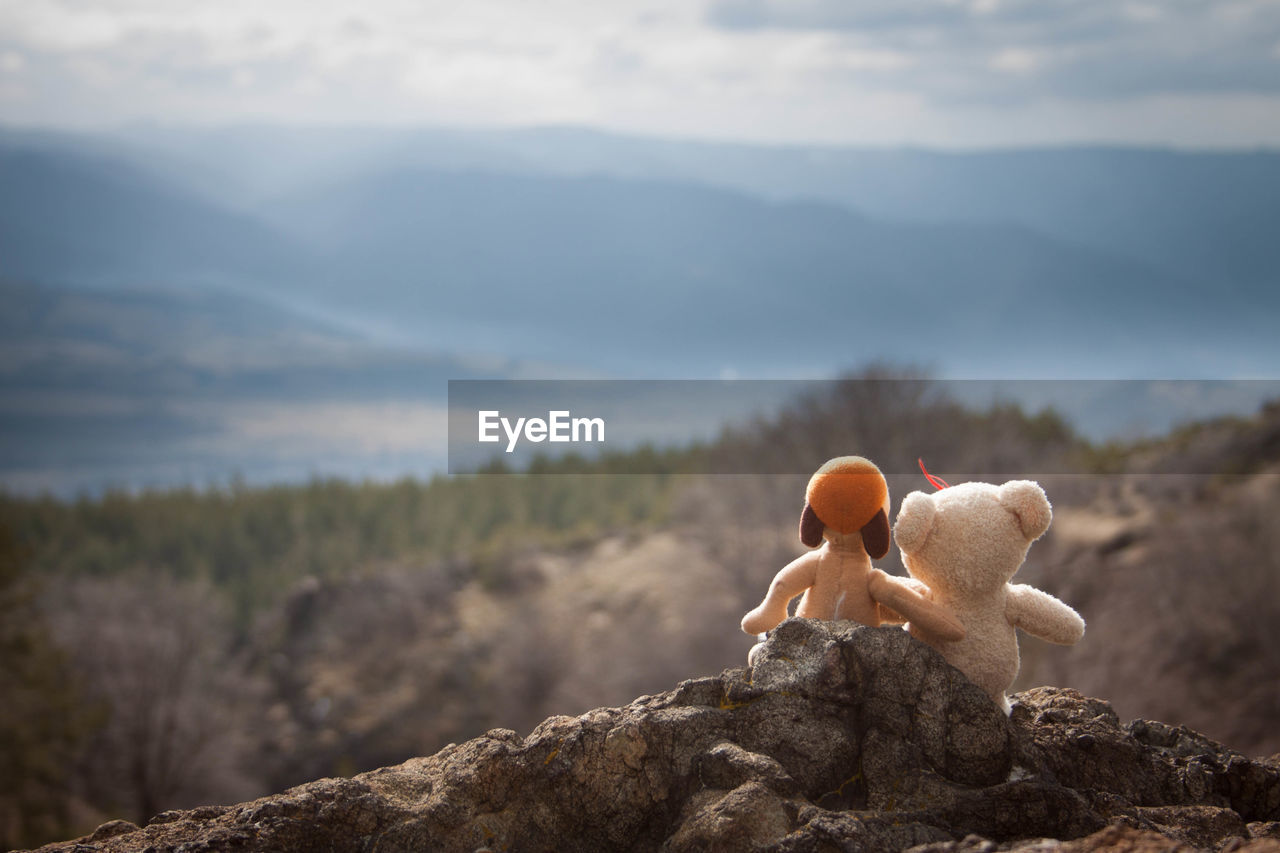 Stuffed Toys Overlooking Countryside Landscape