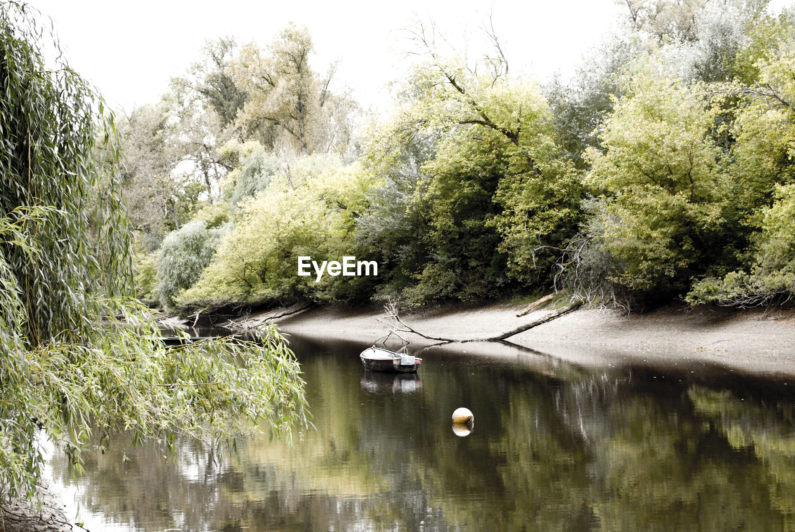 Boat in river surrounded by trees