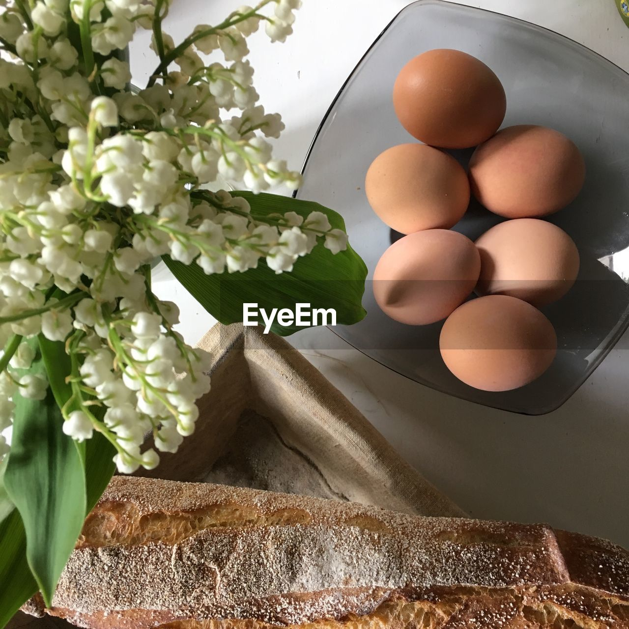 freshness, food, food and drink, healthy eating, no people, wellbeing, egg, plant, indoors, nature, still life, fragility, close-up, vulnerability, table, flowering plant, raw food, flower, brown, white color