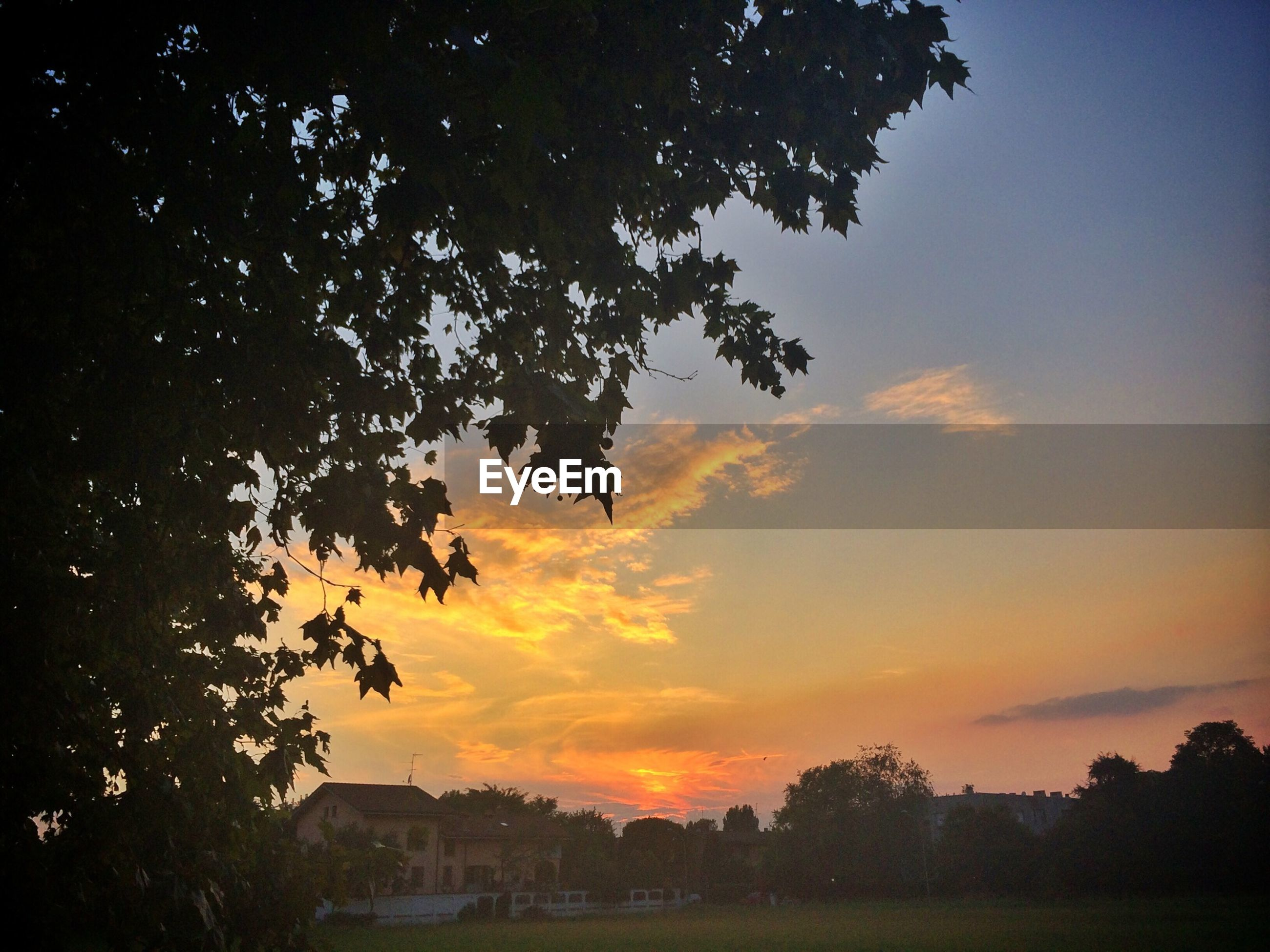 Scenic view of sunset over houses and trees on grassy field