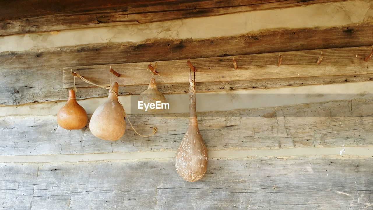 Dried squashes hanging from hooks on wooden wall