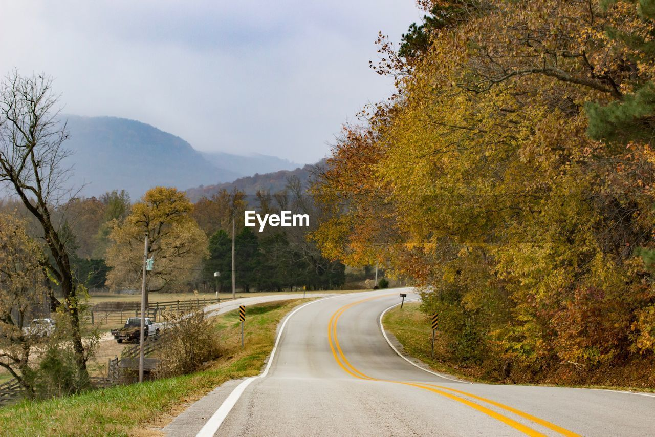 tree, road, plant, the way forward, transportation, direction, autumn, beauty in nature, road marking, nature, marking, mountain, no people, sky, sign, symbol, double yellow line, scenics - nature, change, day, diminishing perspective, outdoors, dividing line