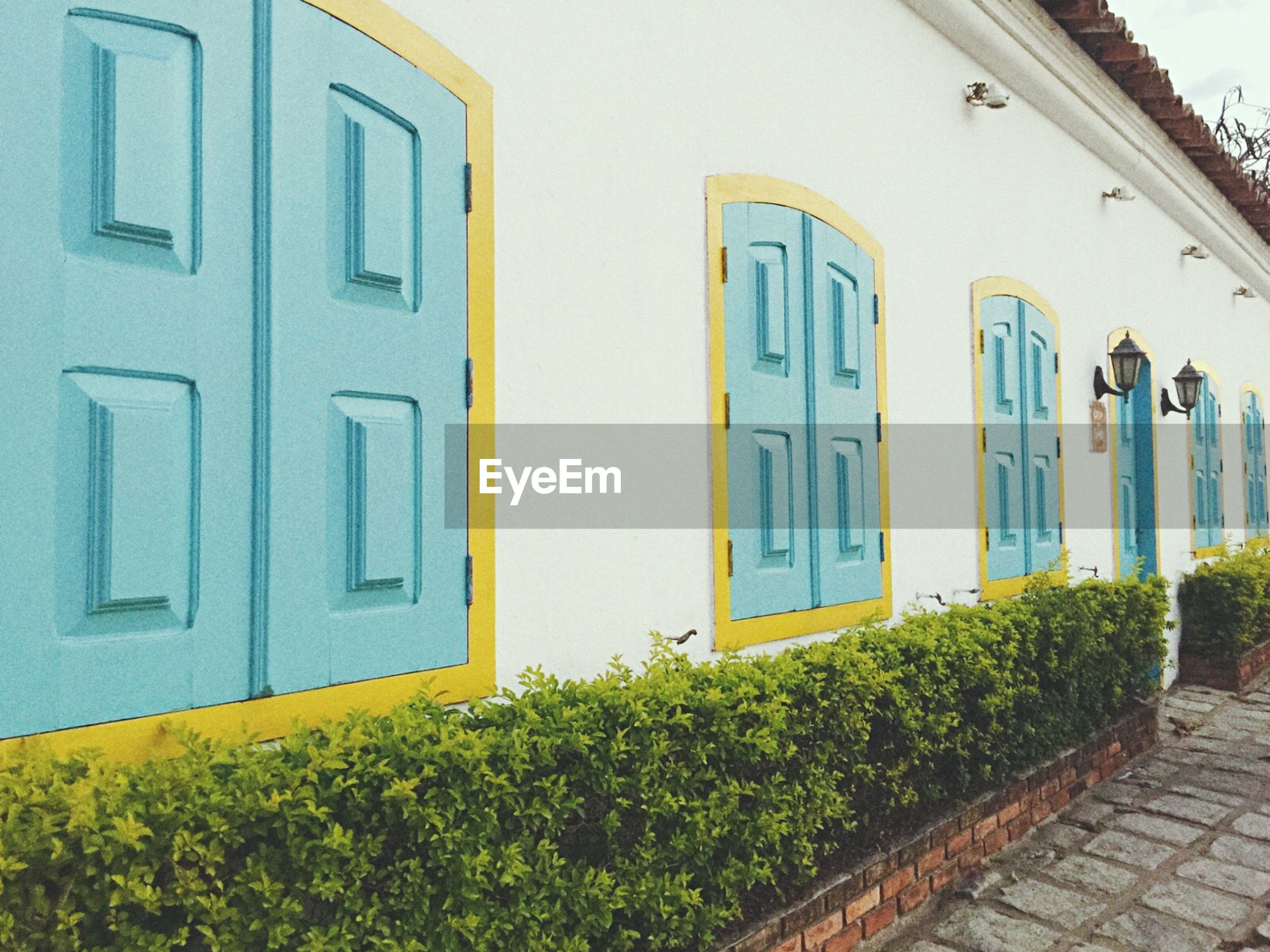 building exterior, architecture, built structure, window, house, residential structure, residential building, door, plant, yellow, building, growth, facade, closed, outdoors, day, green color, no people, potted plant, balcony