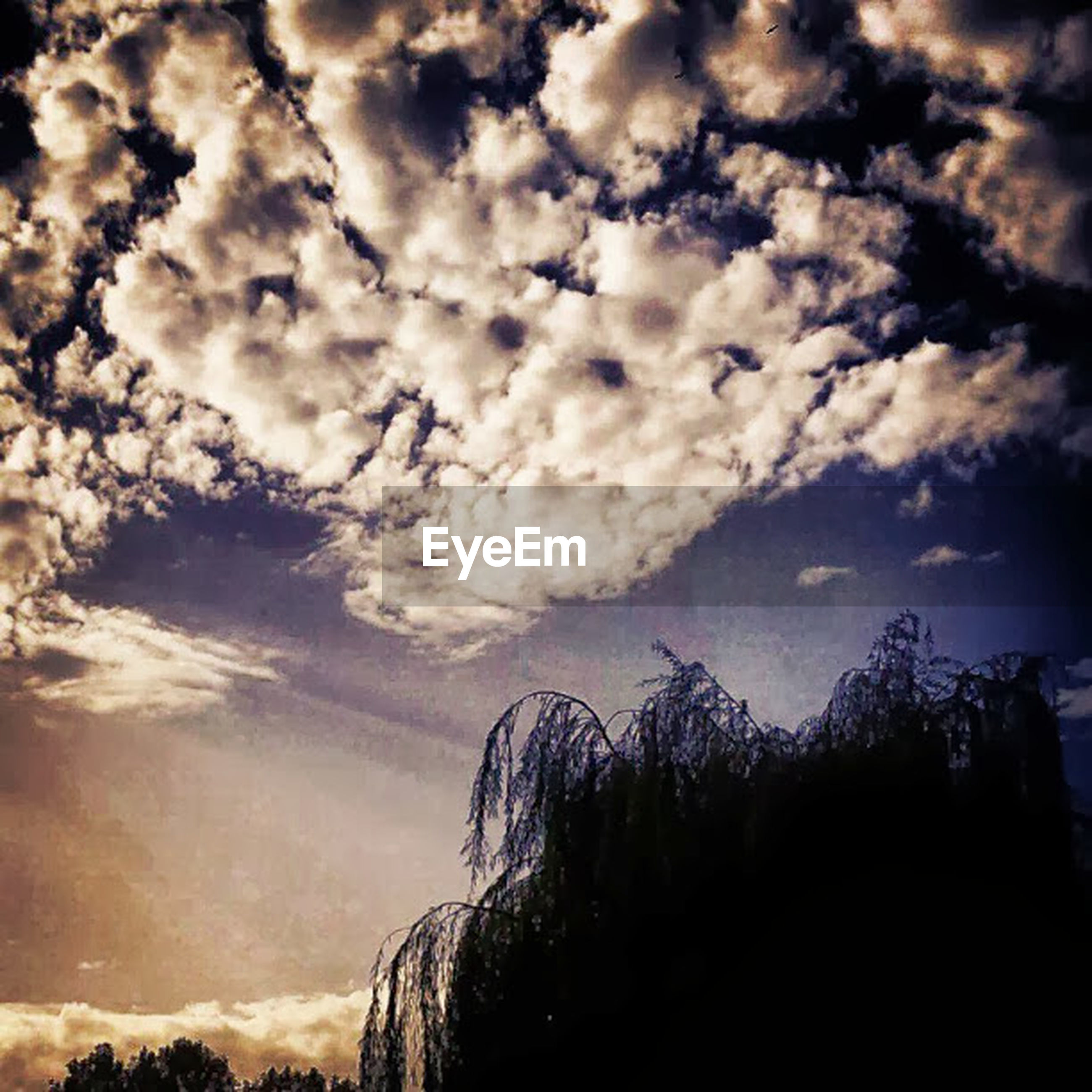 sky, cloud - sky, cloudy, low angle view, silhouette, cloud, tree, tranquility, scenics, beauty in nature, nature, tranquil scene, weather, overcast, dusk, dramatic sky, outdoors, no people, idyllic, growth