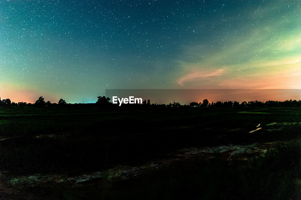 sky, scenics - nature, beauty in nature, tranquil scene, tranquility, landscape, environment, field, tree, night, land, star - space, nature, idyllic, no people, plant, non-urban scene, space, astronomy, star