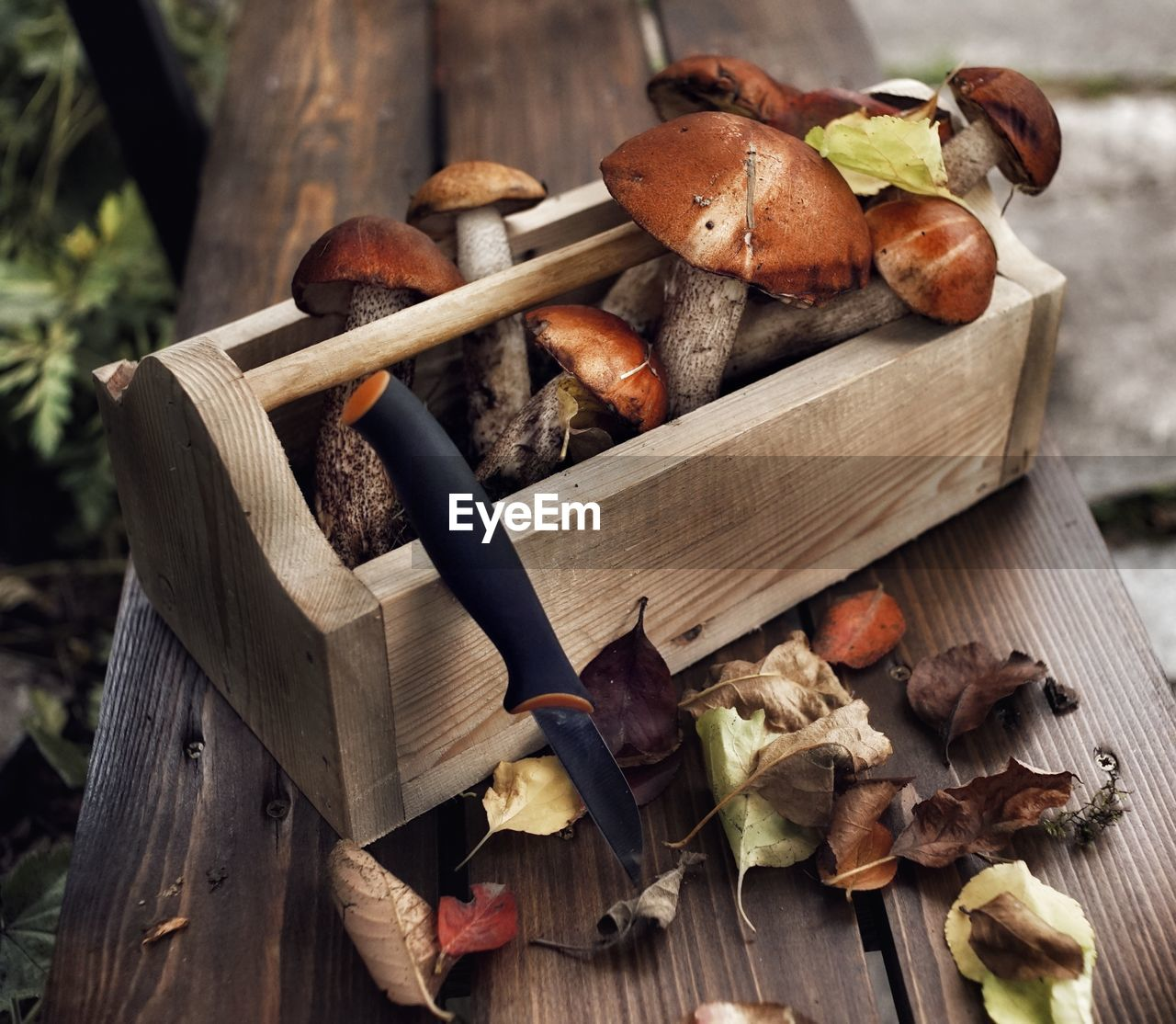 High Angle View Of Mushrooms In Wooden Container On Table