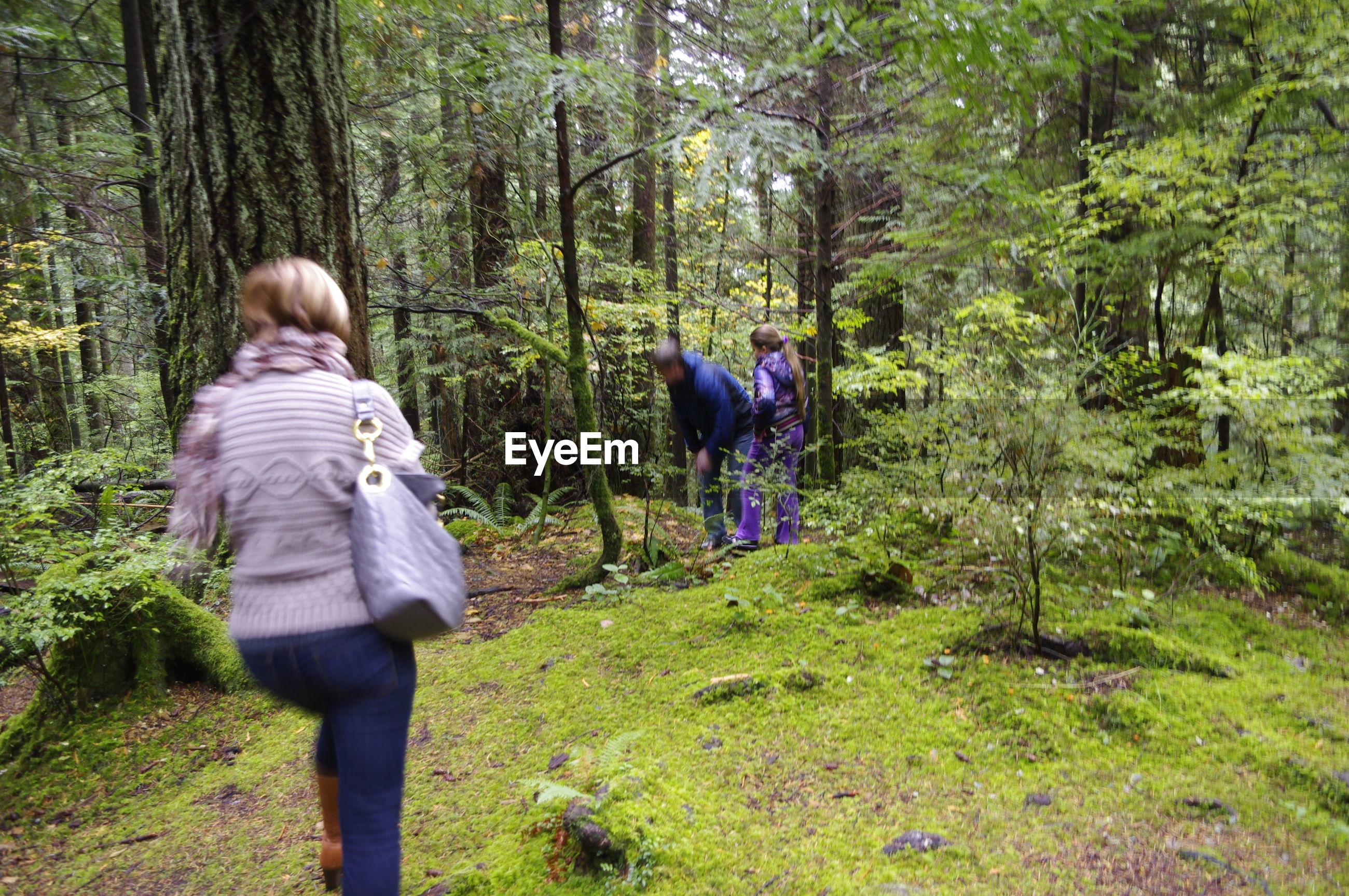 REAR VIEW OF WOMEN WALKING ON TREES IN FOREST