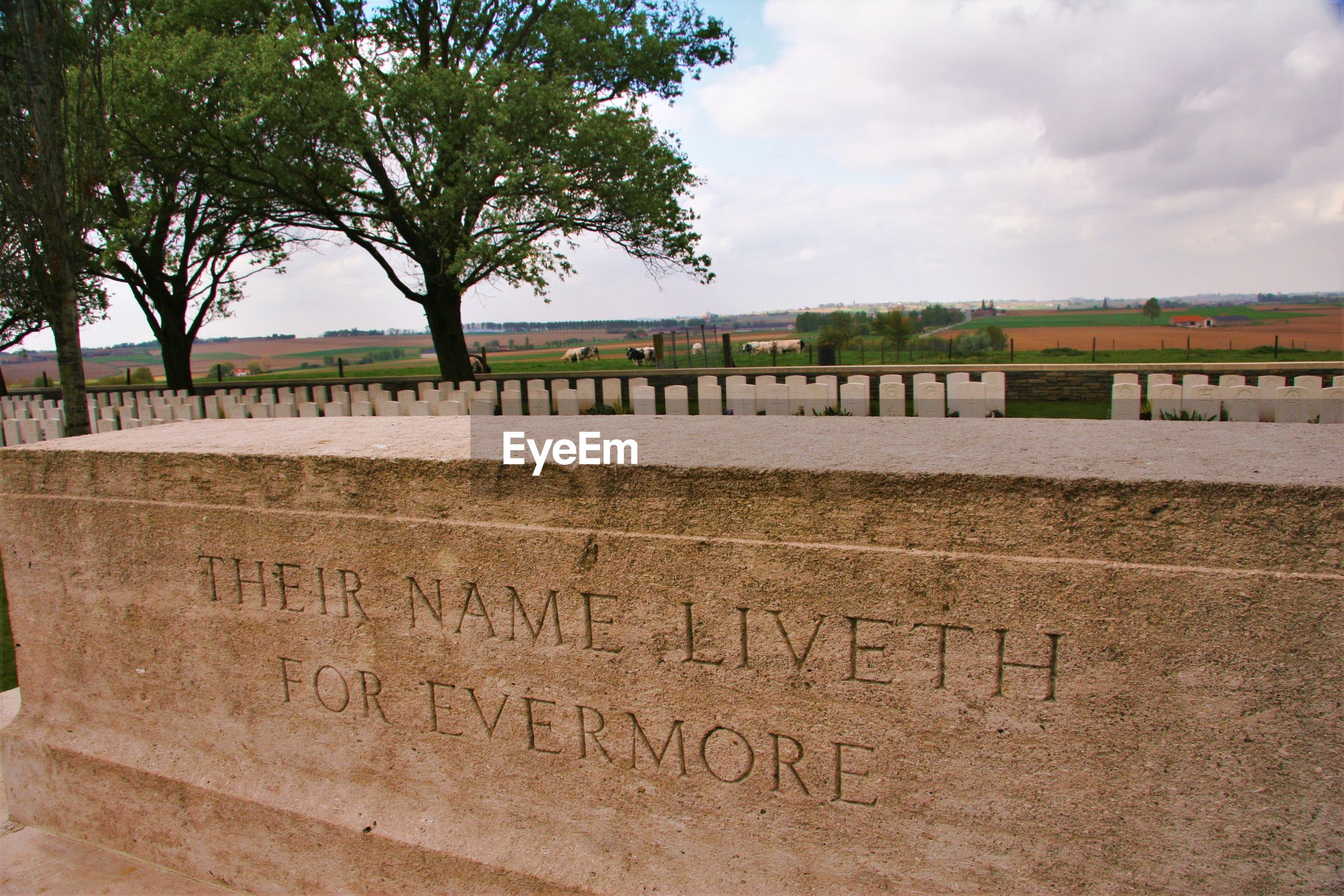text, cemetery, sky, memorial, day, no people, outdoors, gravestone