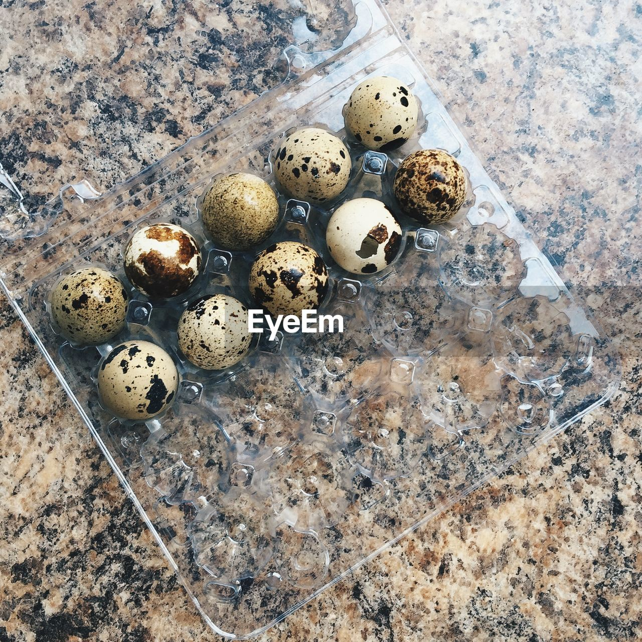 High angle view of quail eggs in plastic carton
