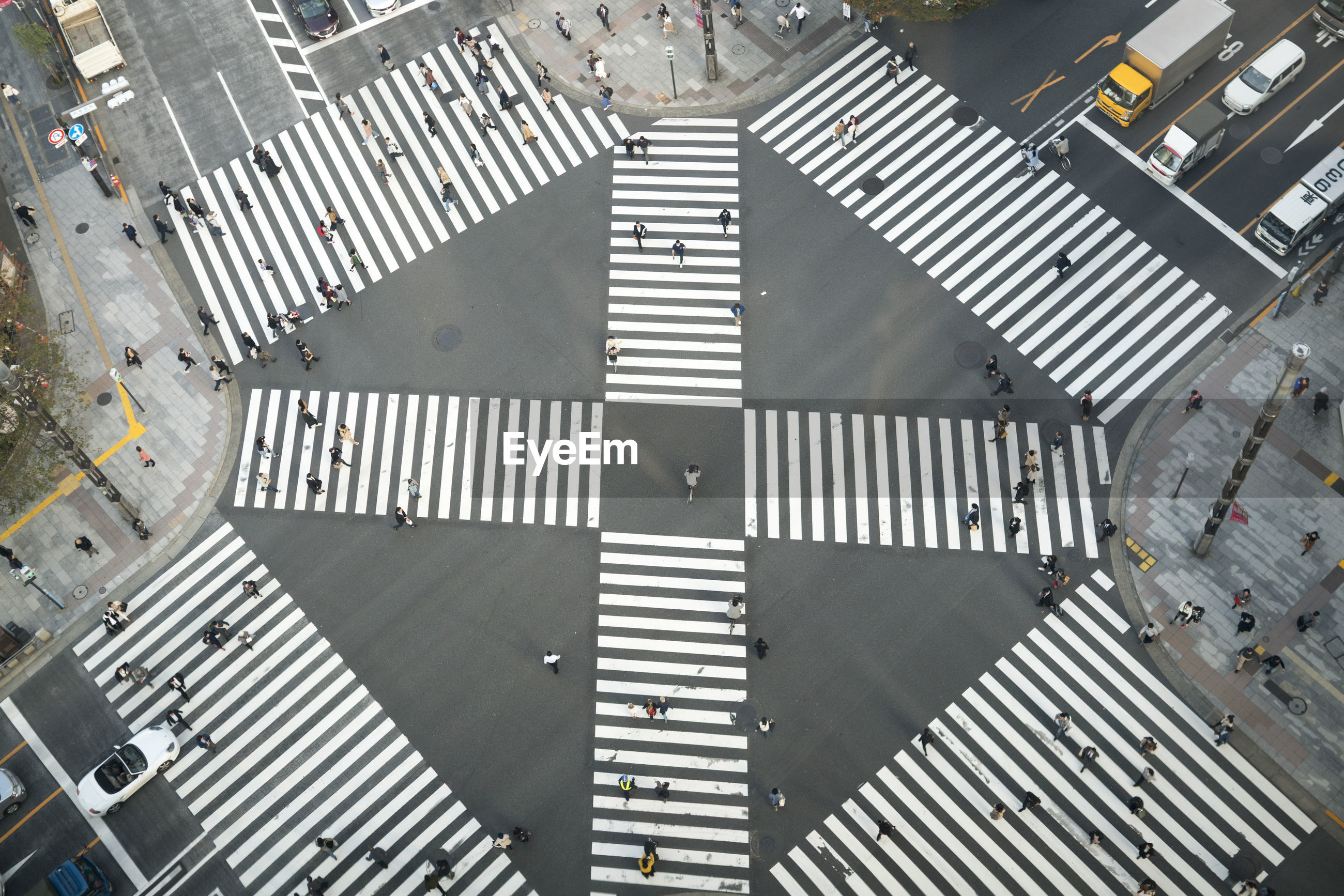 HIGH ANGLE VIEW OF ROAD CROSSING SIGN ON STREET
