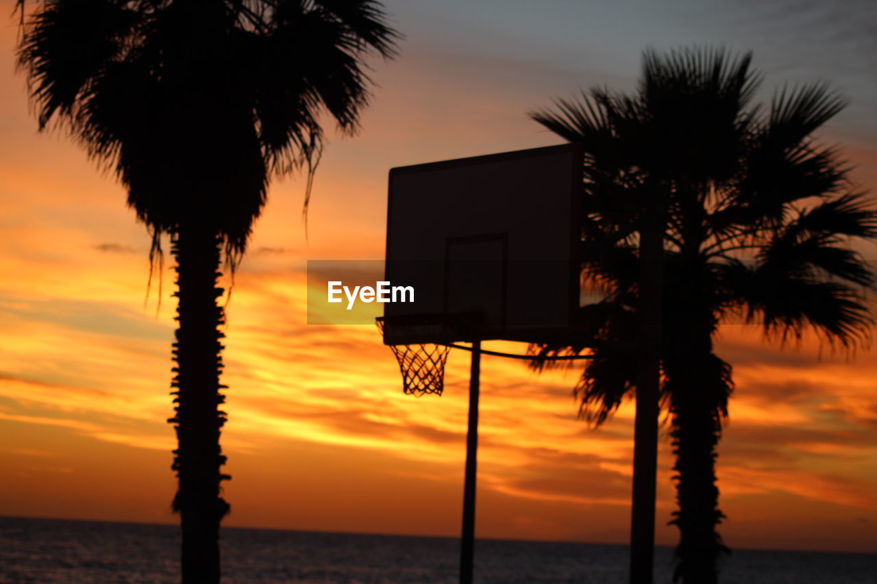 sunset, palm tree, sea, silhouette, beauty in nature, tree, sky, orange color, nature, scenics, water, tranquility, tranquil scene, beach, dusk, tree trunk, horizon over water, outdoors, no people, growth