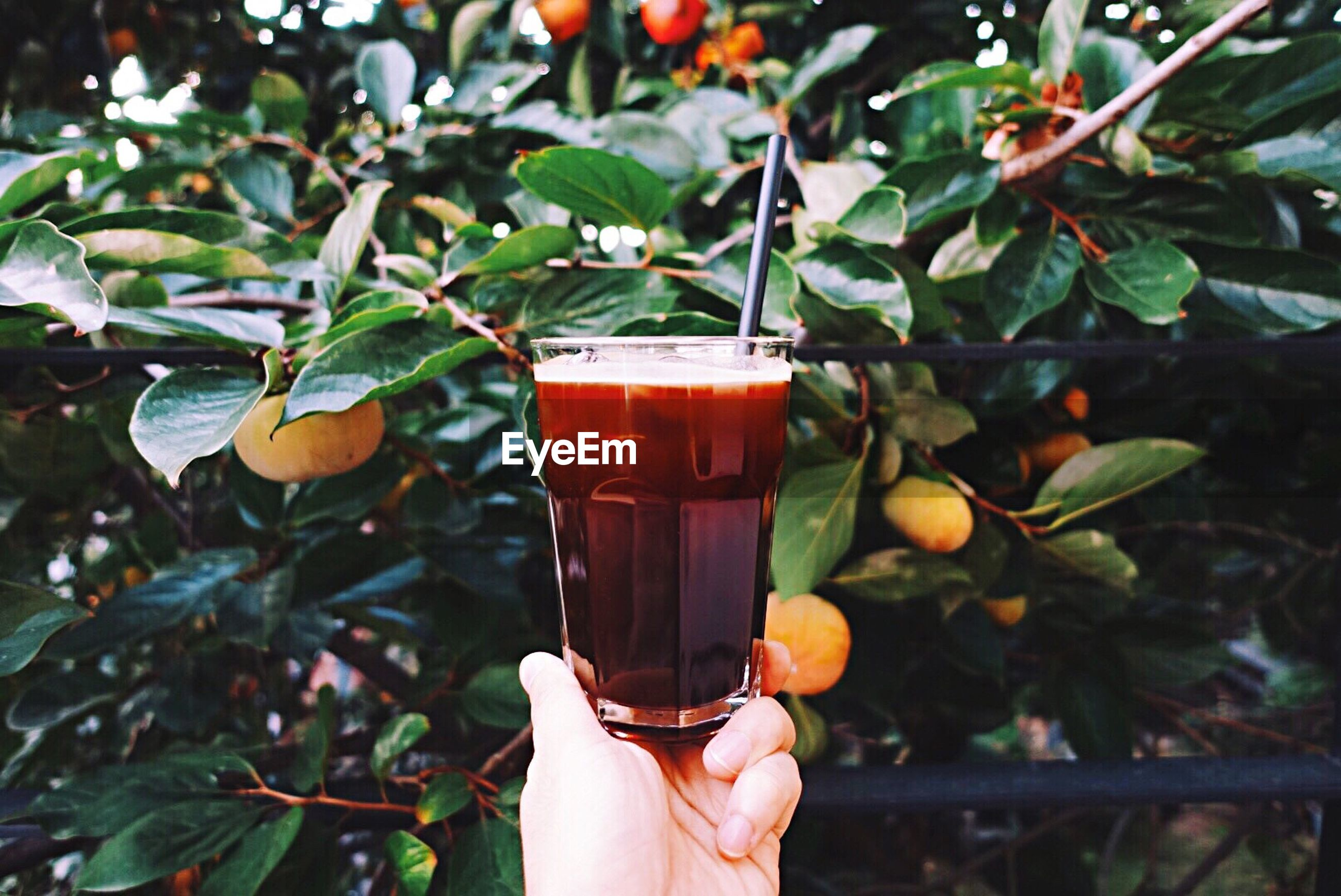 food and drink, drink, person, refreshment, freshness, holding, focus on foreground, close-up, cropped, part of, personal perspective, leaf, drinking straw, drinking glass, healthy eating, food, unrecognizable person