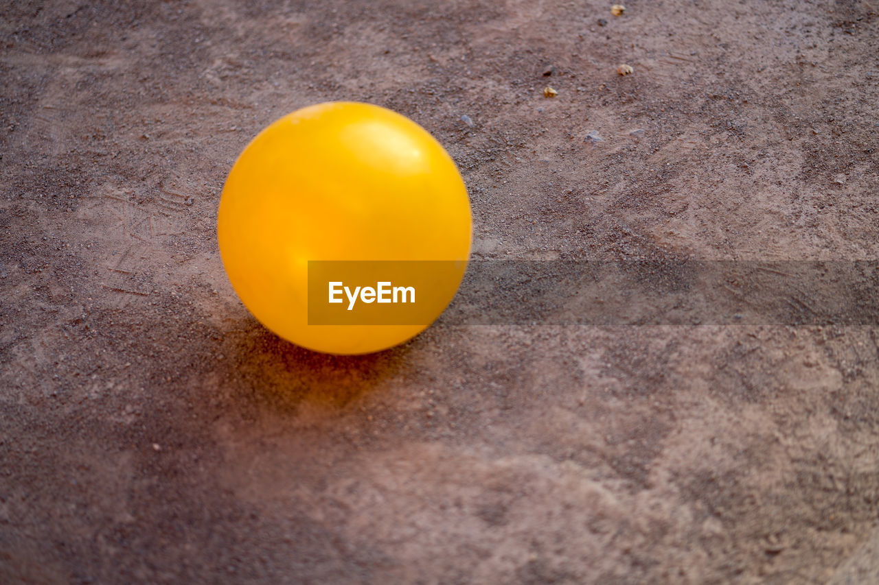 yellow, food, no people, food and drink, egg, close-up, healthy eating, wellbeing, freshness, still life, high angle view, selective focus, egg yolk, raw food, table, orange color, fragility, vulnerability, single object, nature