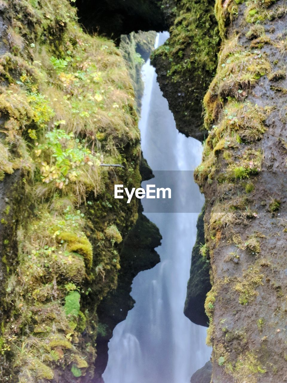 rock, water, beauty in nature, rock - object, waterfall, nature, plant, scenics - nature, no people, tree, solid, moss, outdoors, motion, forest, day, environment, growth, land, flowing water, flowing, power in nature