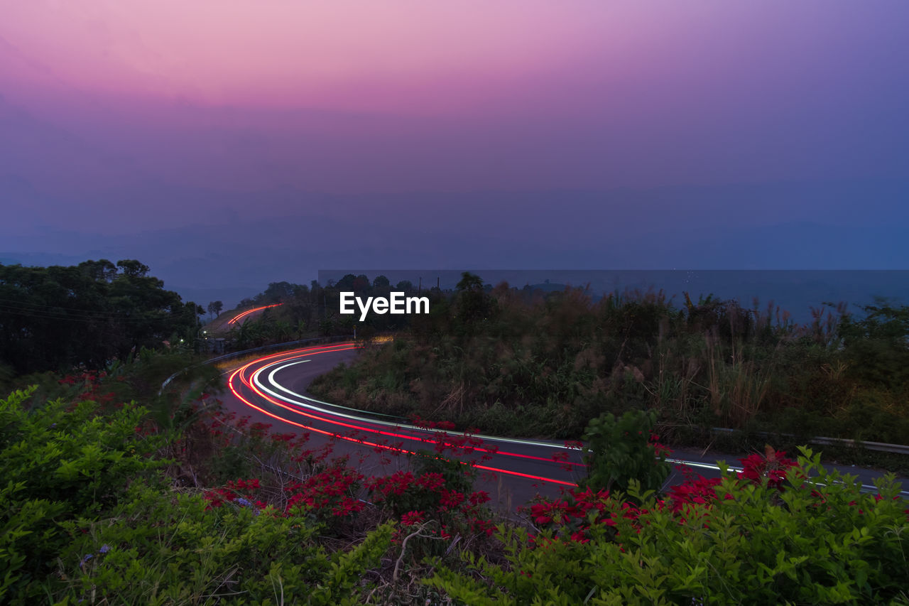 HIGH ANGLE VIEW OF LIGHT TRAILS ON ROAD AMIDST TREES