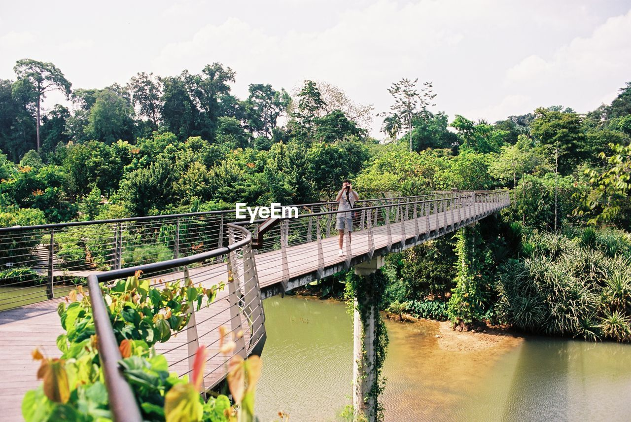 plant, water, tree, bridge, connection, nature, growth, built structure, bridge - man made structure, architecture, railing, sky, river, day, transportation, green color, incidental people, beauty in nature, waterfront, footbridge, outdoors